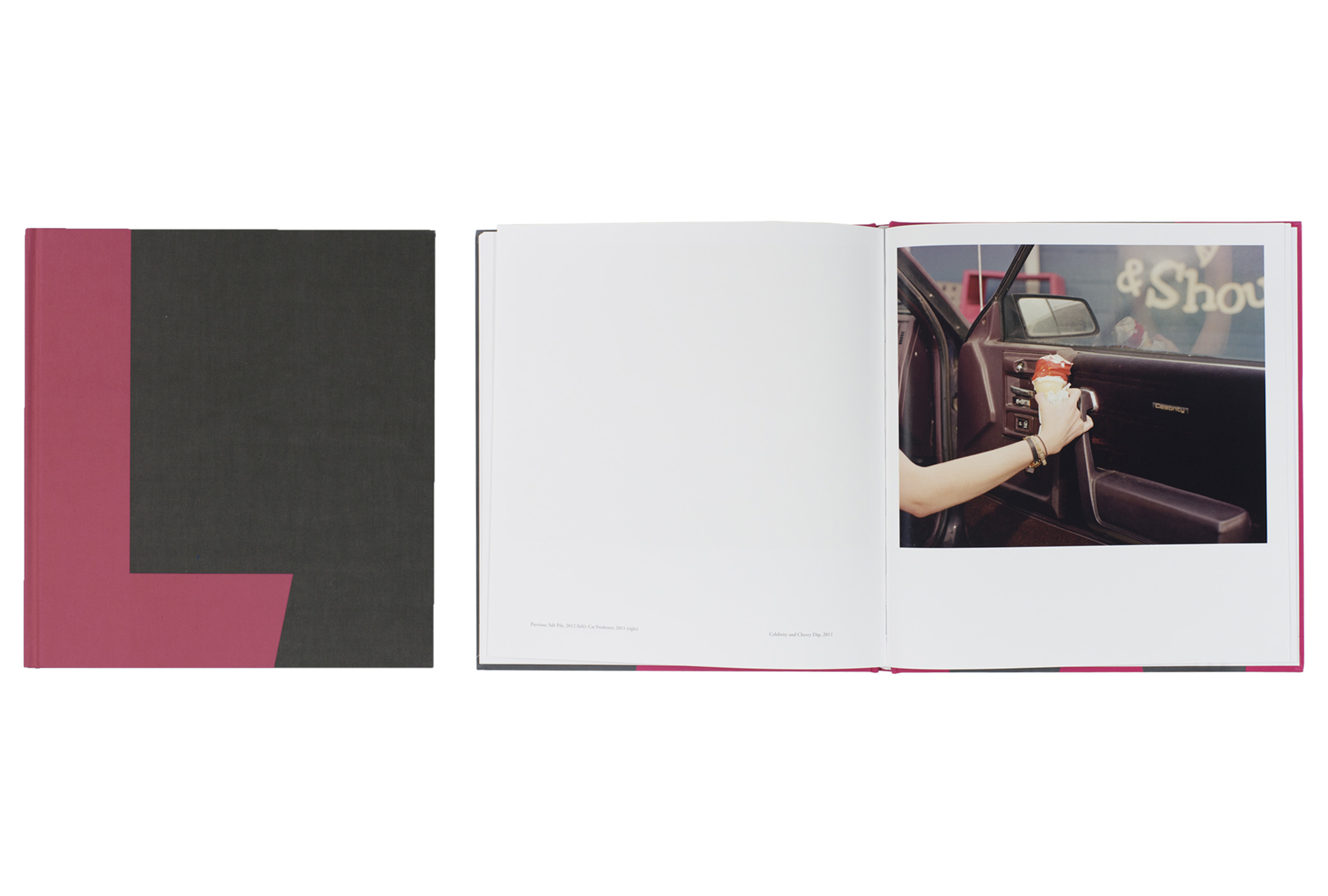 Landmark by J. W. Fisher and J. T. Leonard, published by Daylight. Short-listed title for First PhotoBook.