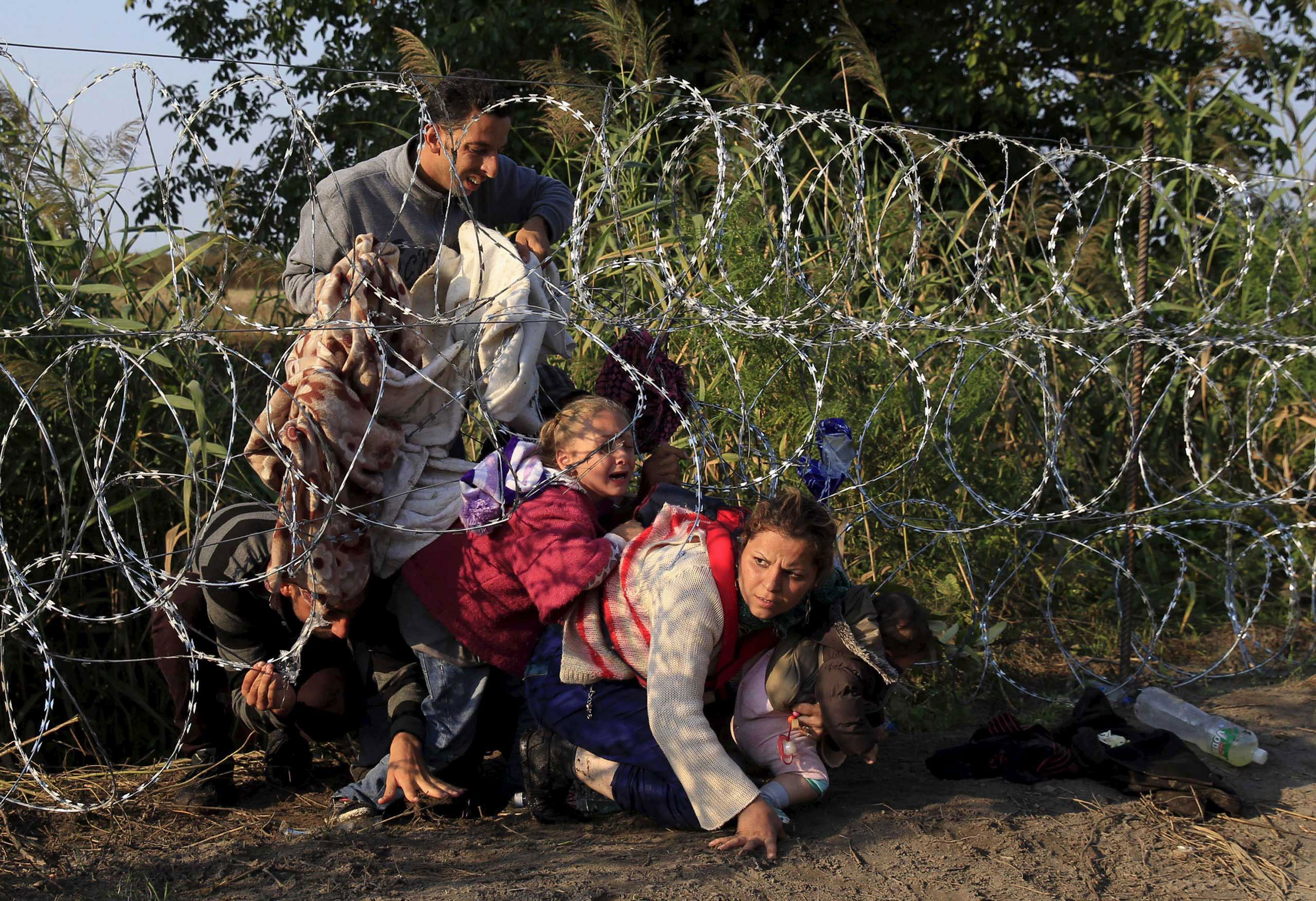 Syrian migrants cross under a razor-wire fence as they enter Hungary at the border with Serbia, near Roszke, Hungary. Aug. 27, 2015.