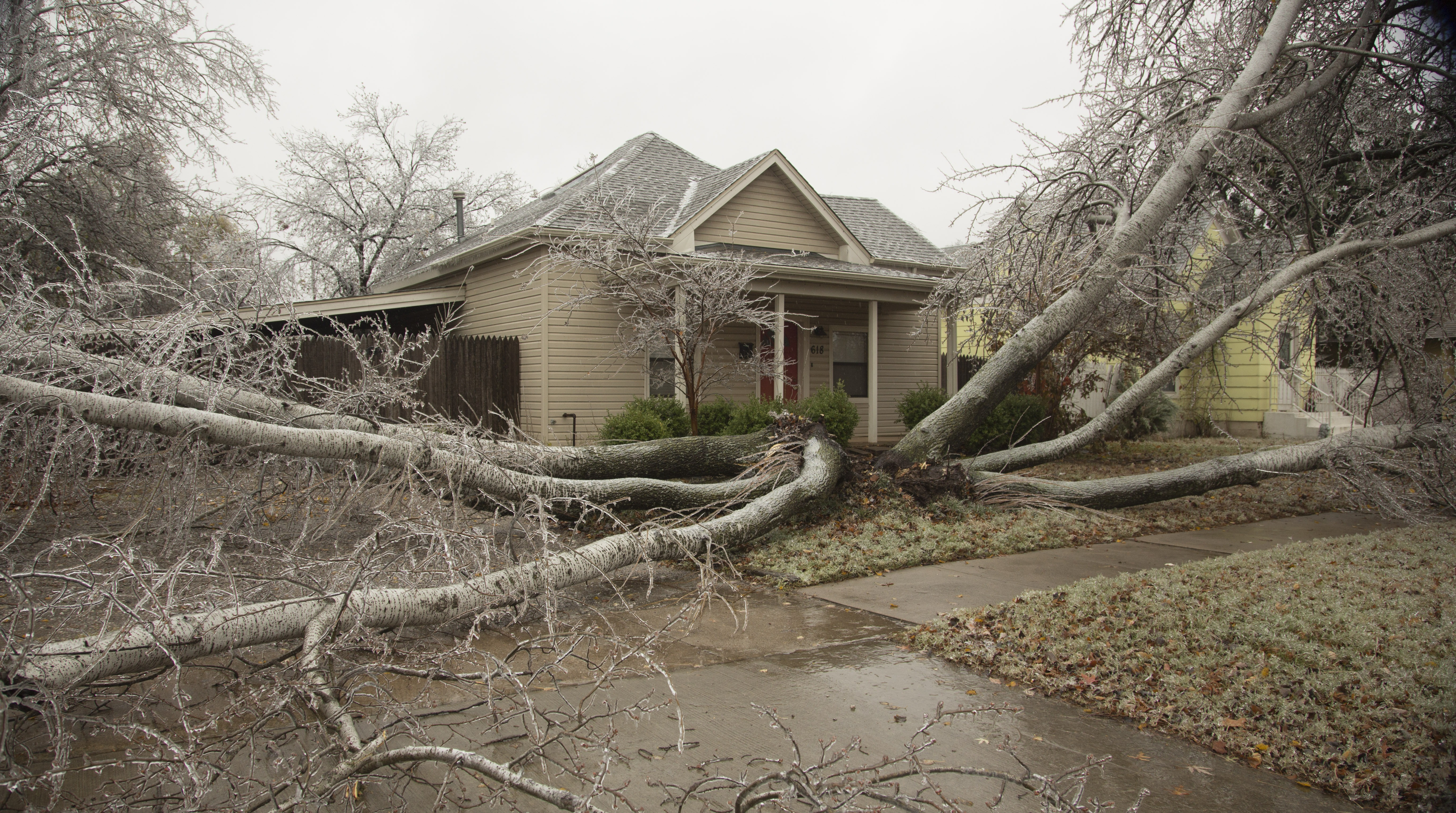 A 50 foot tall tree covers the front yard of a house after it broke in half due to ice an ice storm on November 28, 2015 in Edmond, Oklahoma.