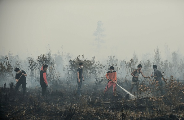 Volunteers extinguishing a peatland fire on Oct. 27, 2015, in the outskirts of Palangkaraya, in Indonesia's Central Kalimantan province, where respiratory illnesses have soared as the smog has worsened