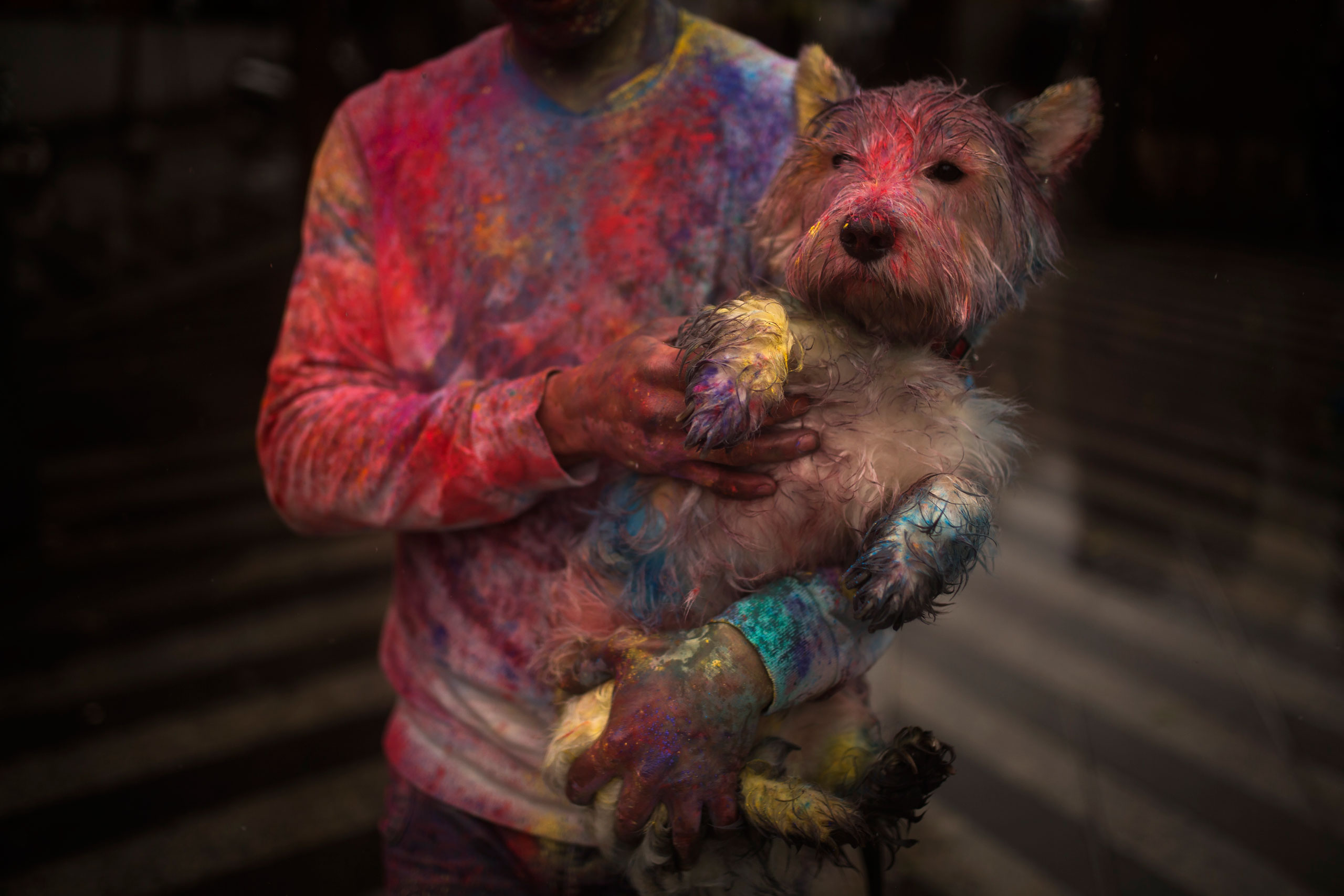 A reveler carries his dog during a Holi Festival in Madrid, Spain, April 26, 2015. The festival is based on the Hindu spring festival Holi, also known as the festival of colors where participants throw at each other dry powder and colored water.