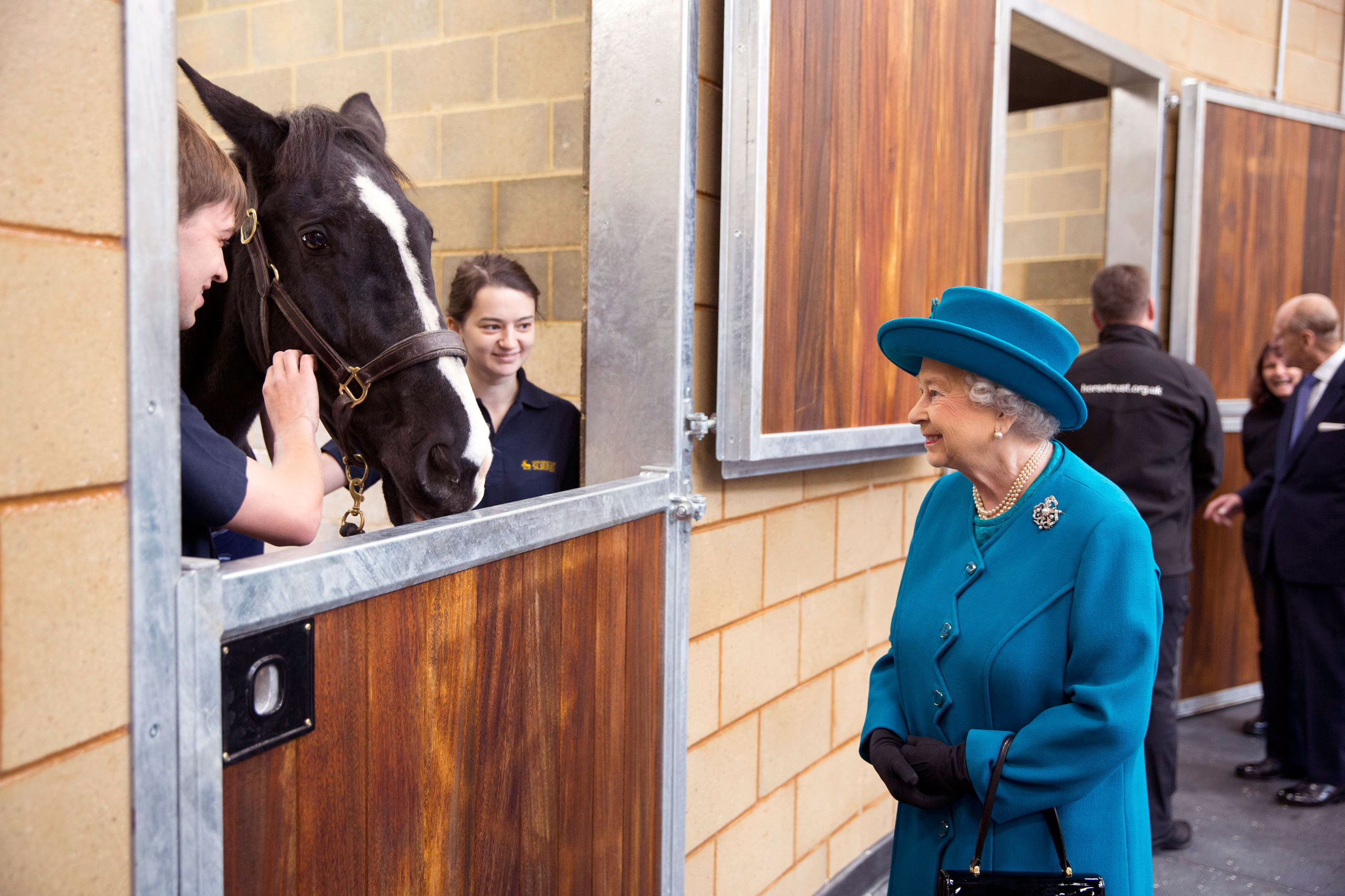 Queen Elizabeth II visits the Large Animals Clinical Skills Building where she met students undertaking equine examinations and working with livestock.                               Queen Elizabeth II arrived along with the Duke of Edinburgh at the University of Surrey in Guildford, England, to officially open the university's new School of Veterinary Medicine. Oct. 15, 2015.