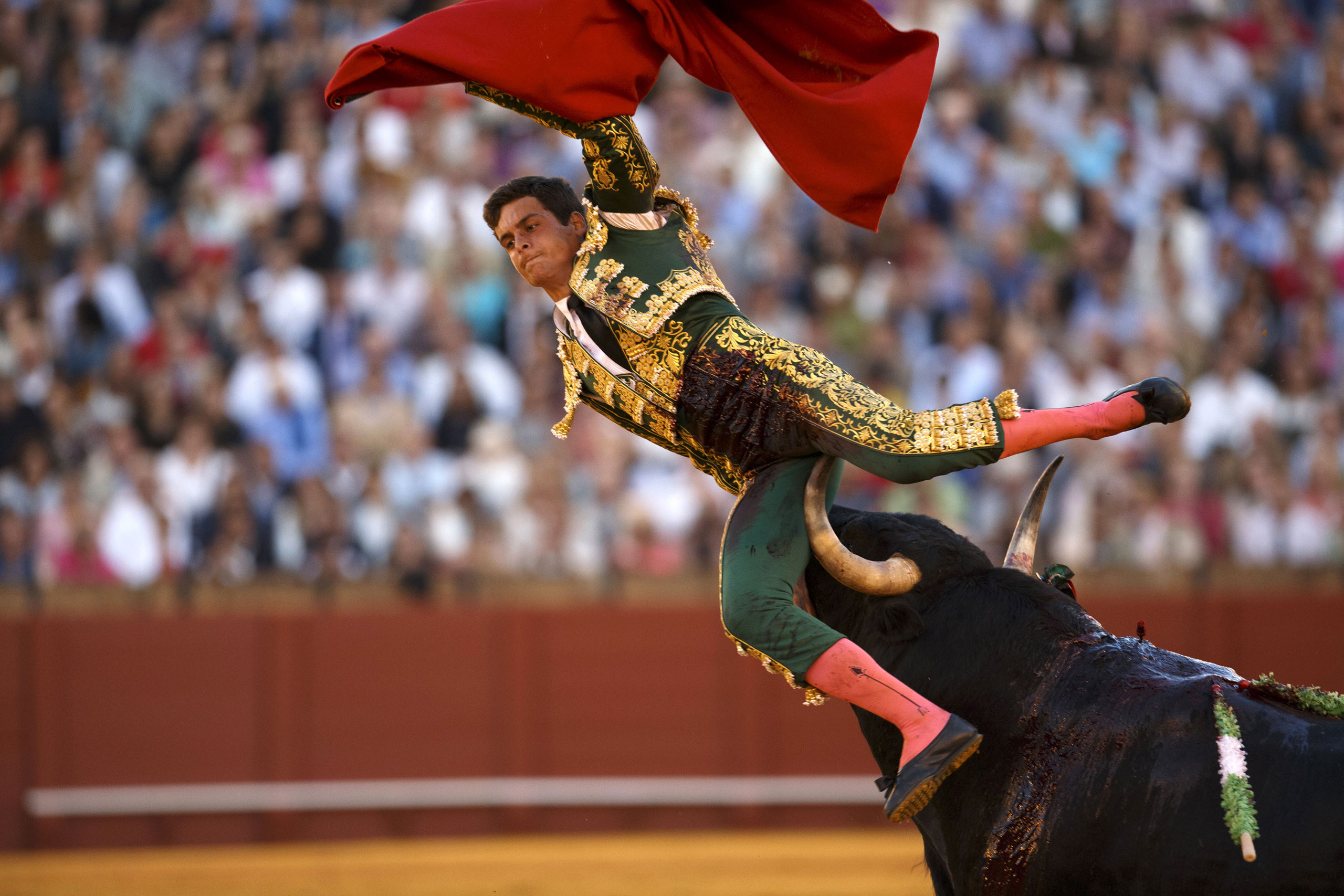 Spanish matador David Galvan is tackled by a bull during a bullfight at The Maestranza bullring, in the Andalusian capital of Seville, Spain, April 24, 2015.