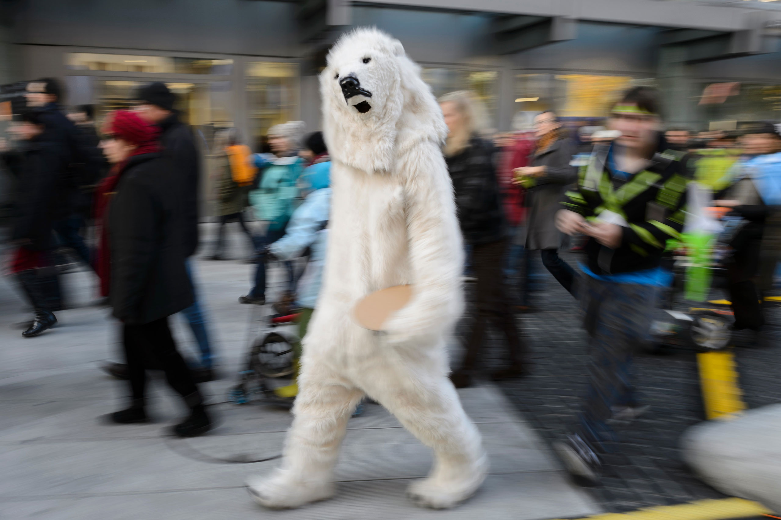 A person dressed as a polar bear walks in Geneva, Switzerland during a rally ahead of the UN climate summit COP21, Nov. 28, 2015.