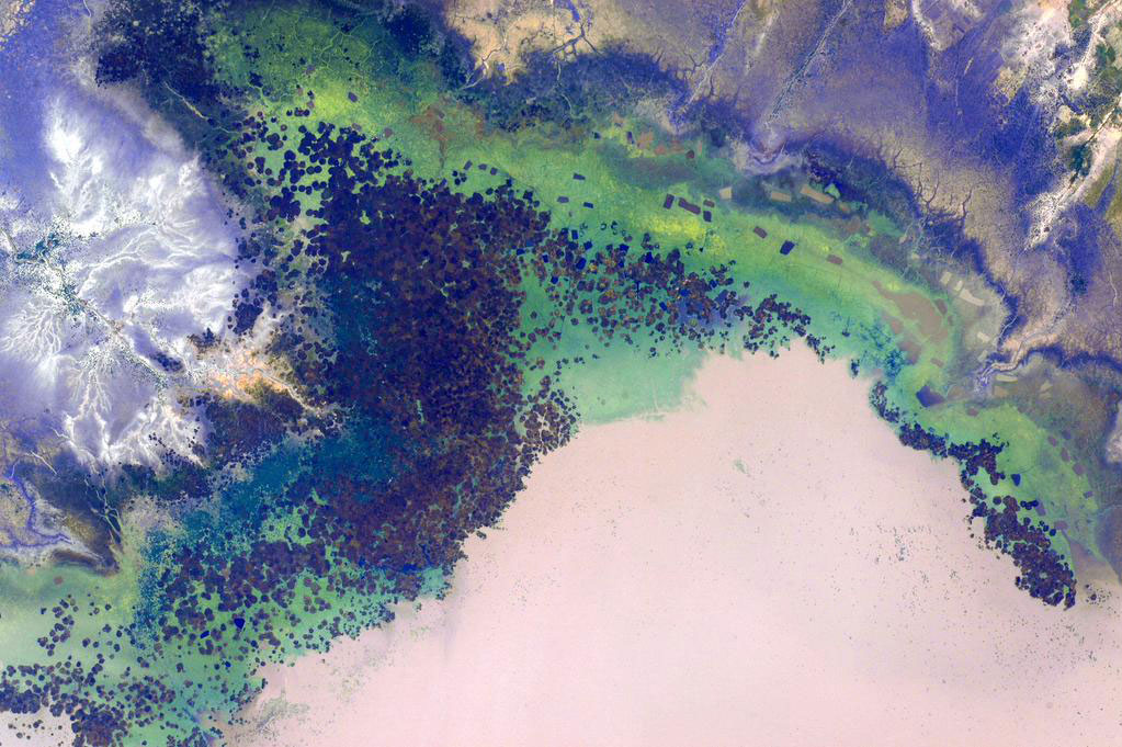 In a picture taken from the International Space Station, the African desert shows some unfamiliar greening on June 14, 2015.
