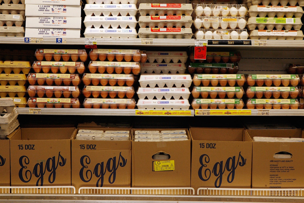 Cartons of eggs sit on a cooler shelf at a Safeway gocery store August 20, 2007 in Washington, DC.