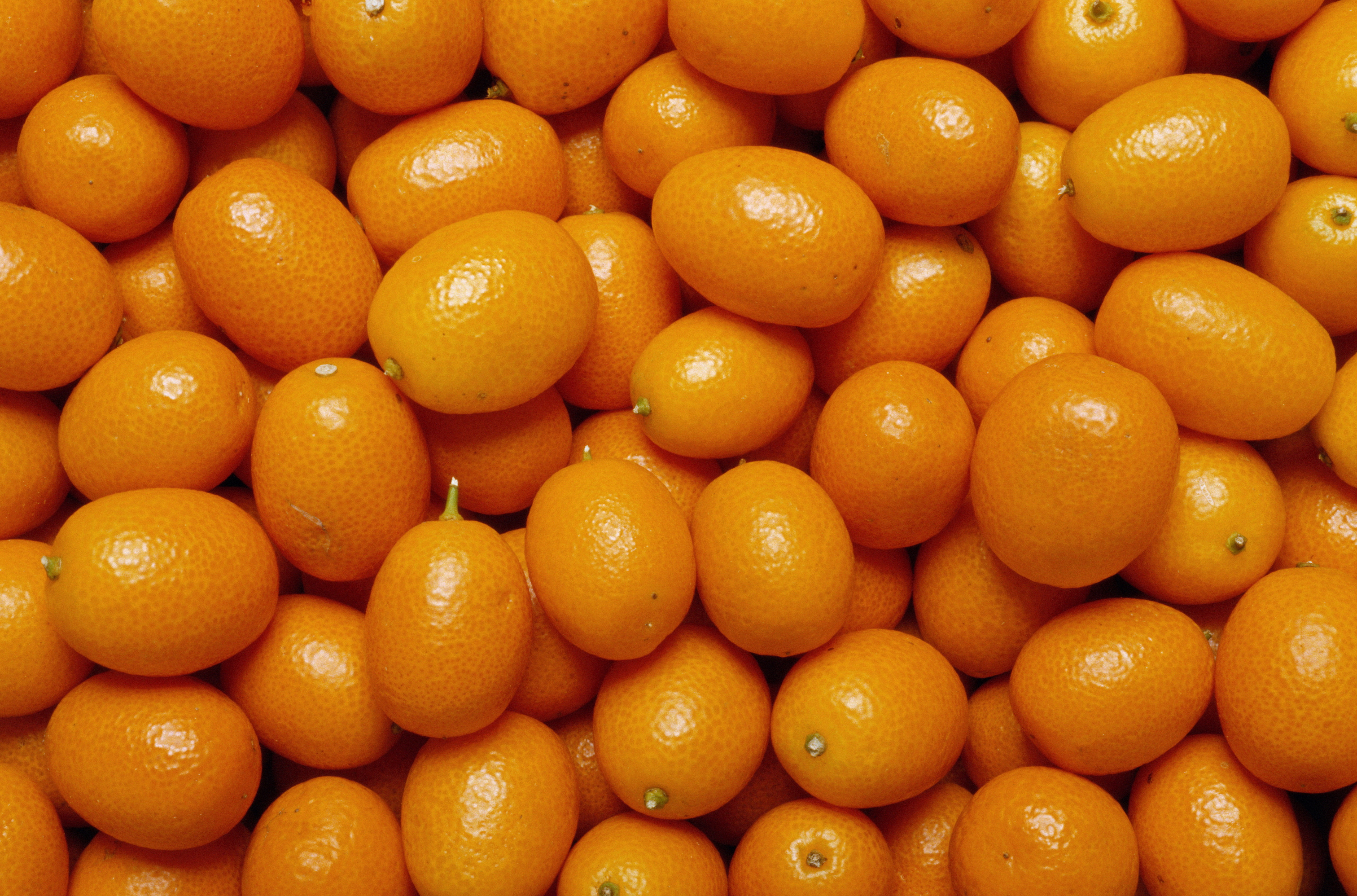 A kumquat's skin is sweet and its flesh is sour—and you can eat both parts.