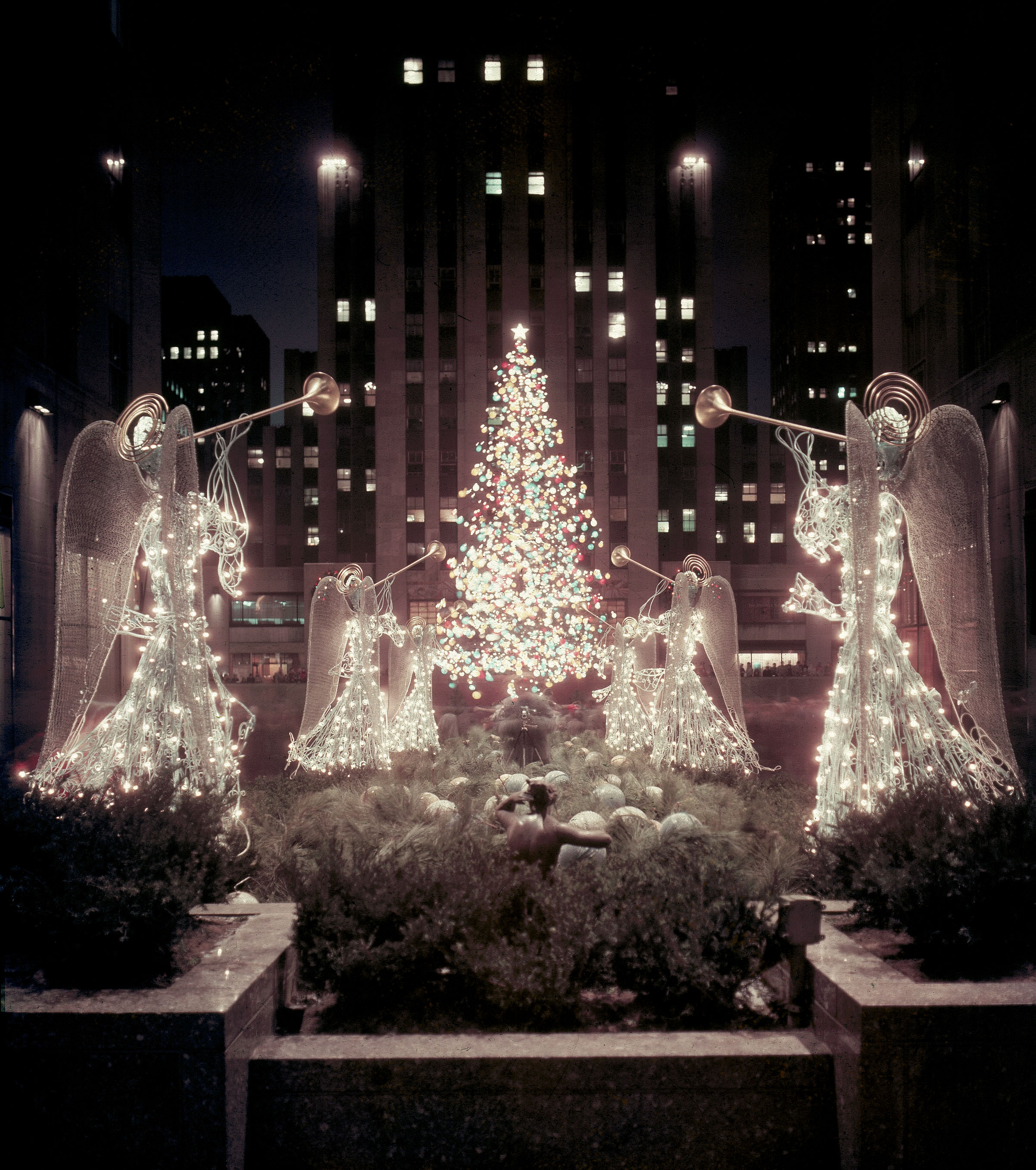1955 Rockefeller Center Tree