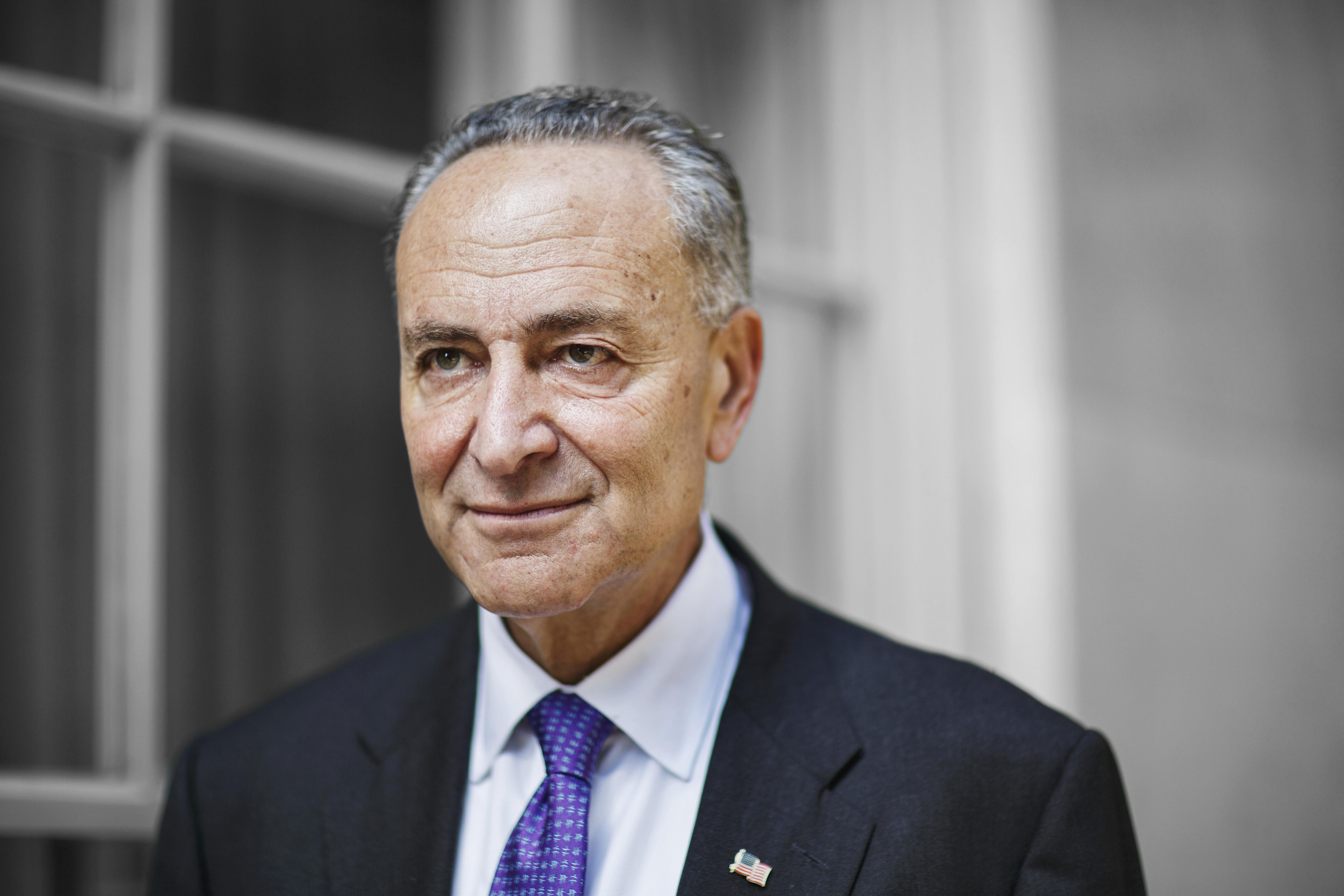 Chuck Schumer:                                When Senate Minority Leader Harry Reid steps down next year, the New York Democrat is his likely successor. His first order of business will be helping change that job title to Senate Majority Leader, but it's a tall order.