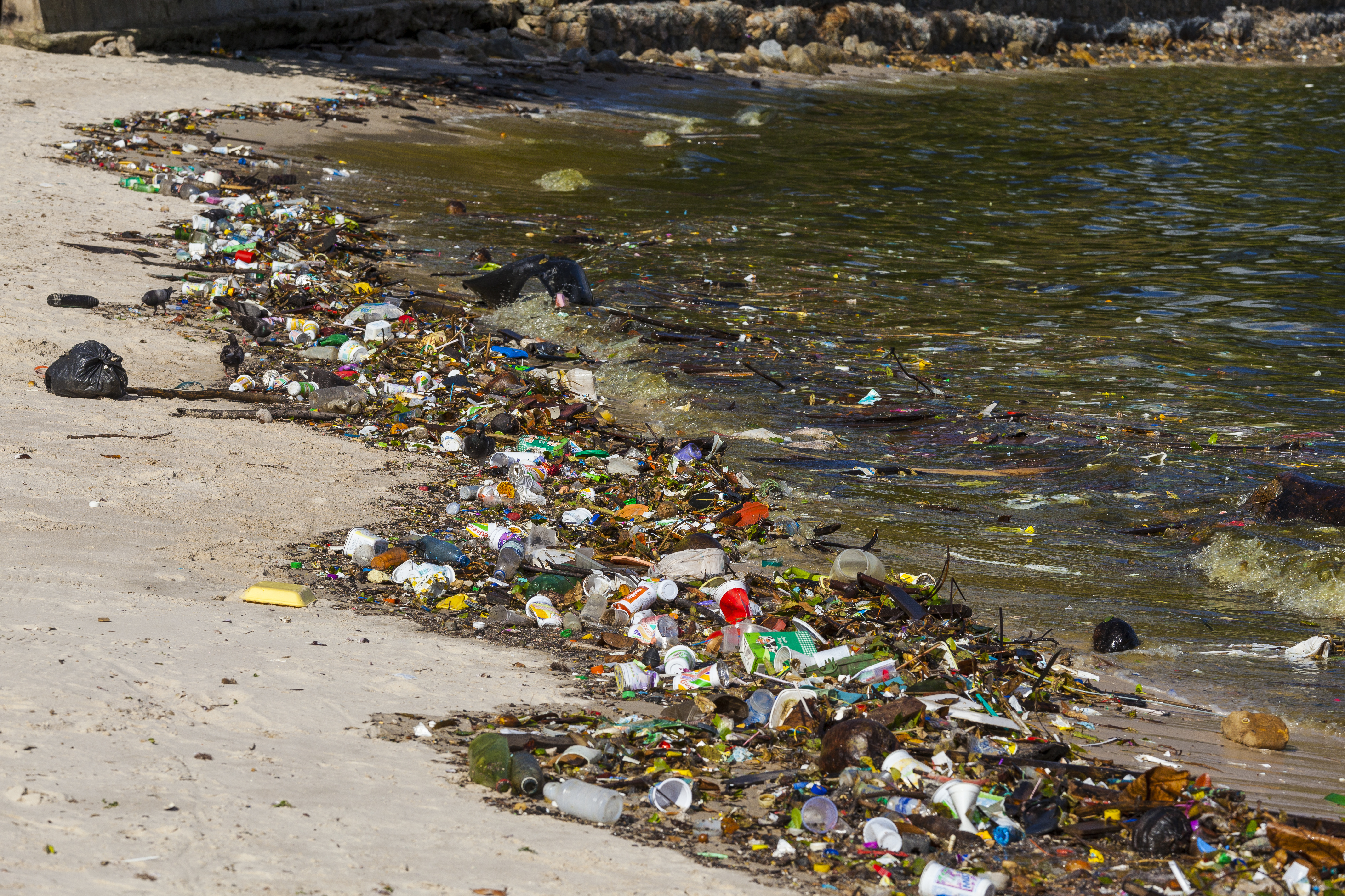Trash lines the shore of Rio's Guanabara Bay