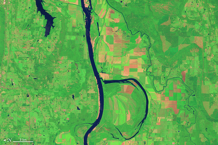 The Operational Land Imager (OLI) on Landsat 8 acquired this image of the Arkansas River and the Holla Bend Wildlife Refuge on Aug. 4, 2014.