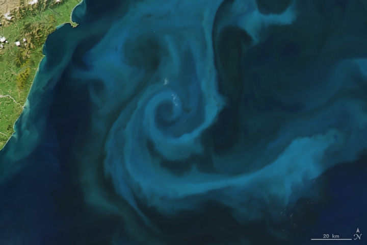 E: The Moderate Resolution Imaging Spectroradiometer (MODIS) on NASA's Aqua satellite captured this image of a phytoplankton bloom off the coast of New Zealand on Oct. 25, 2009.
