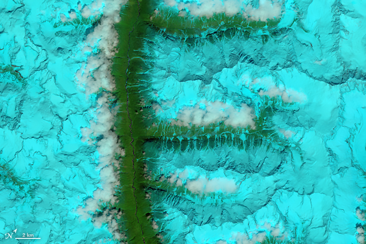 F: The Operational Land Imager (OLI) on Landsat 8 acquired this false-color image of valleys and snow-covered mountain ranges in southeastern Tibet on Aug. 4, 2014.