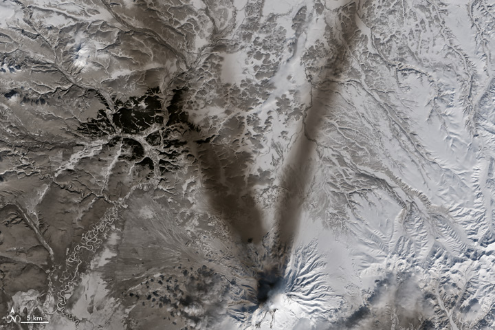 V: The Operational Land Imager (OLI) on Landsat 8 acquired this image of ash on the snow around Shiveluch—one of the largest and most active volcanoes on Russia's Kamchatka Peninsula on March 23, 2015.