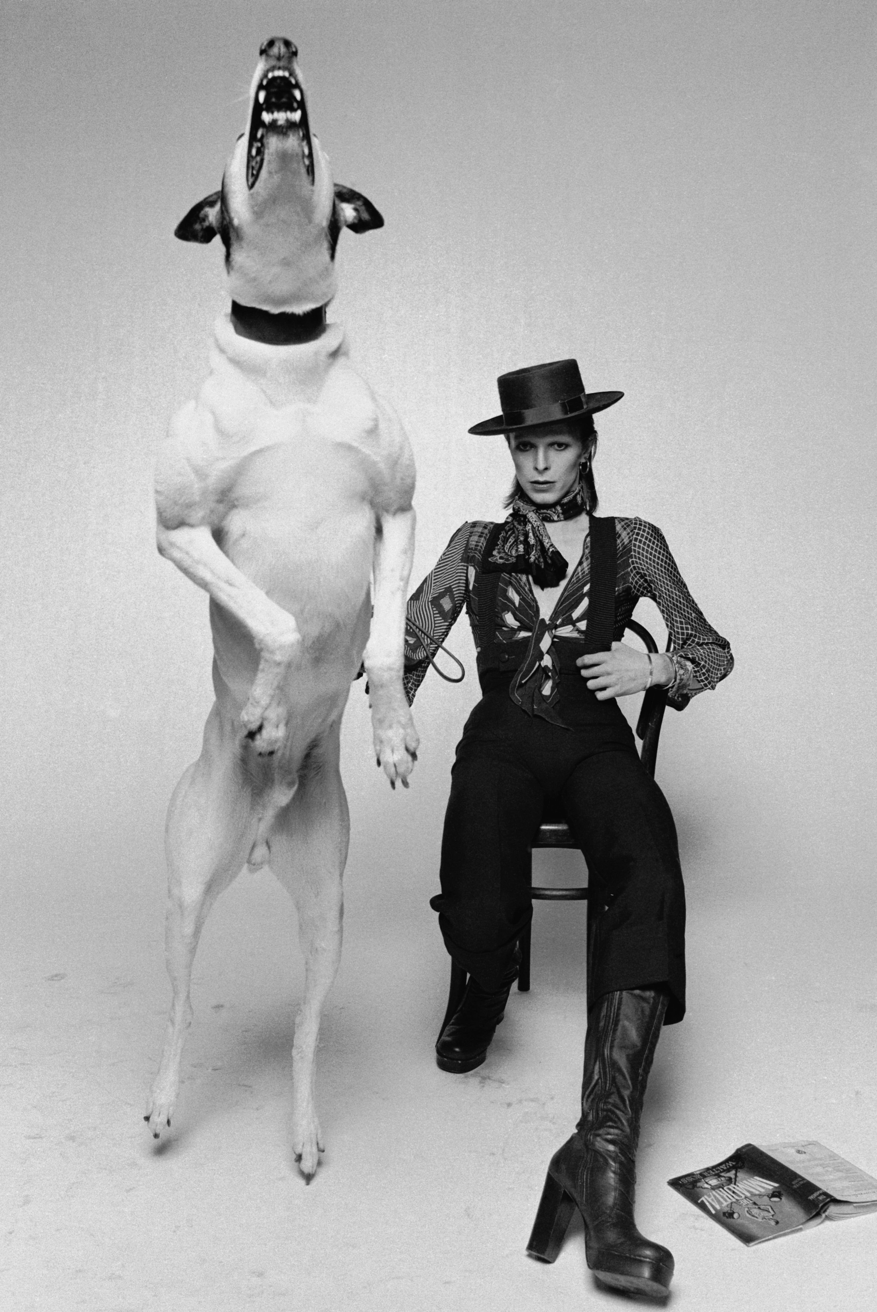 David Bowie is seen with a large barking dog while working on the artwork for his album <i>Diamond Dogs</i> in London in 1974.
