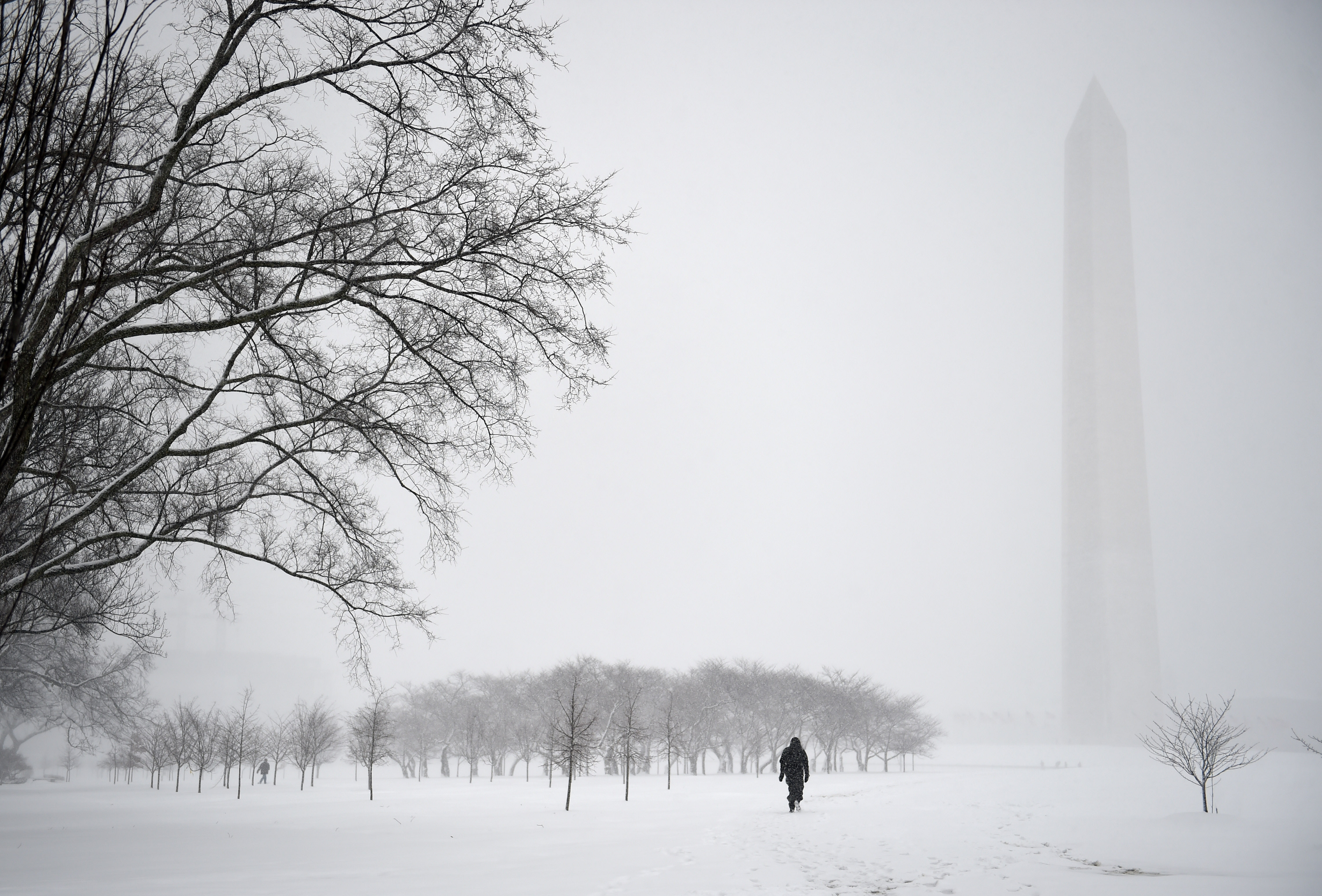 Not many visitors brave the snow for a walk at the National Mall while another snow storm hits Washington, D.C., March 5, 2015, with predicted record low temperatures and severe snow accumulations.