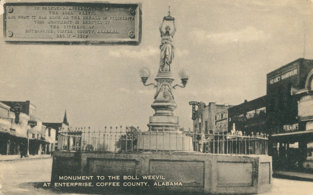 Monument To the Boll Weevil, At Enterprise, Coffee County, Alabama, 1919.