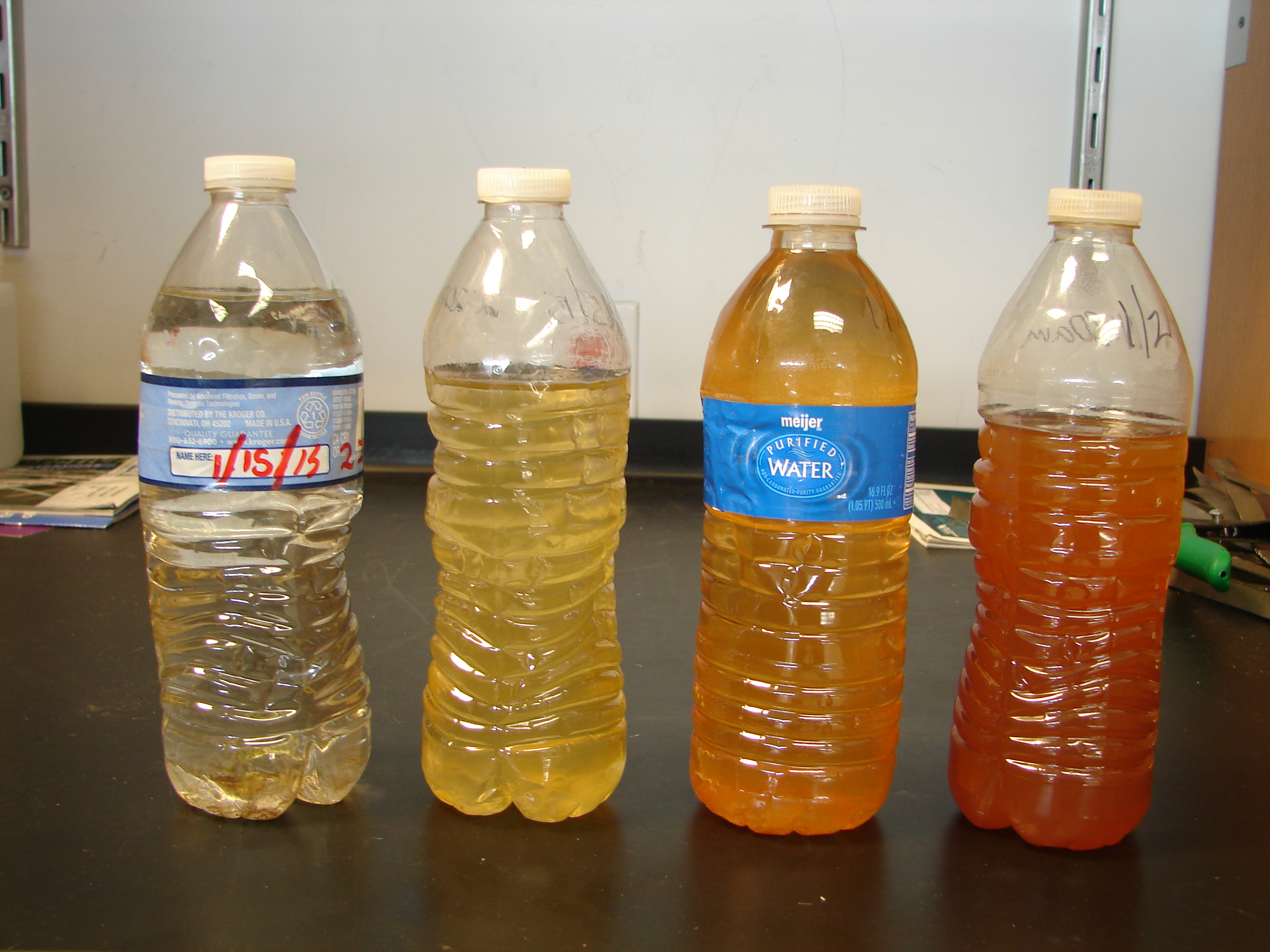 This image provided by FlintWaterStudy.org shows water samples from a Flint, Mich. home. The bottles were collected, from left, on Jan. 15 (2), Jan. 16 and Jan. 21, 2015.