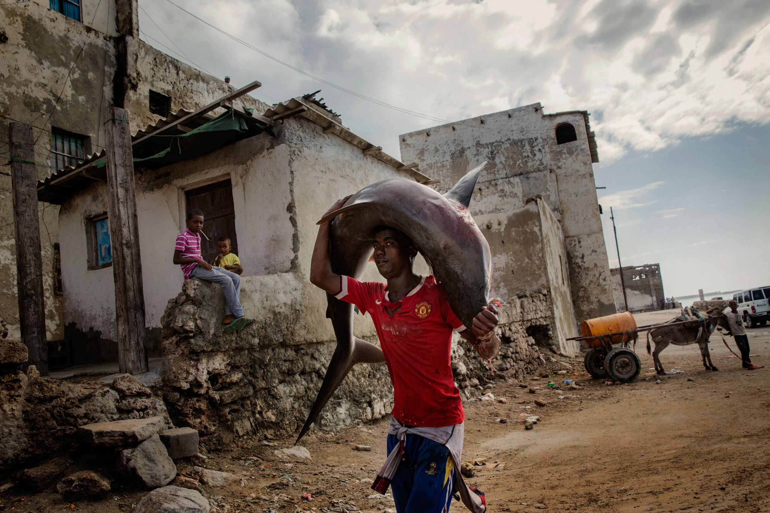 A man carries a shark on the streets of Mogadishu, Somalia.                                A recent escalation of plunders in Somali waters by foreign fishing vessels could mean the return of hijackings, locals fear. Mogadishu, Somalia. October 10, 2015.