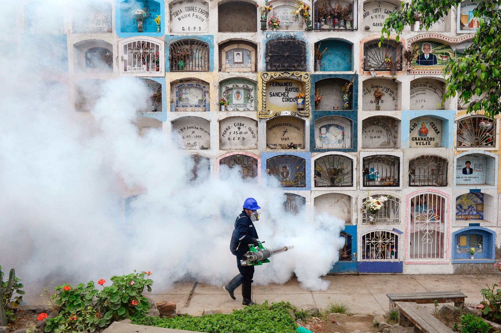 In an effort to stop the spread of Zika, a specialist fumigates a graveyard in Lima on Jan. 15