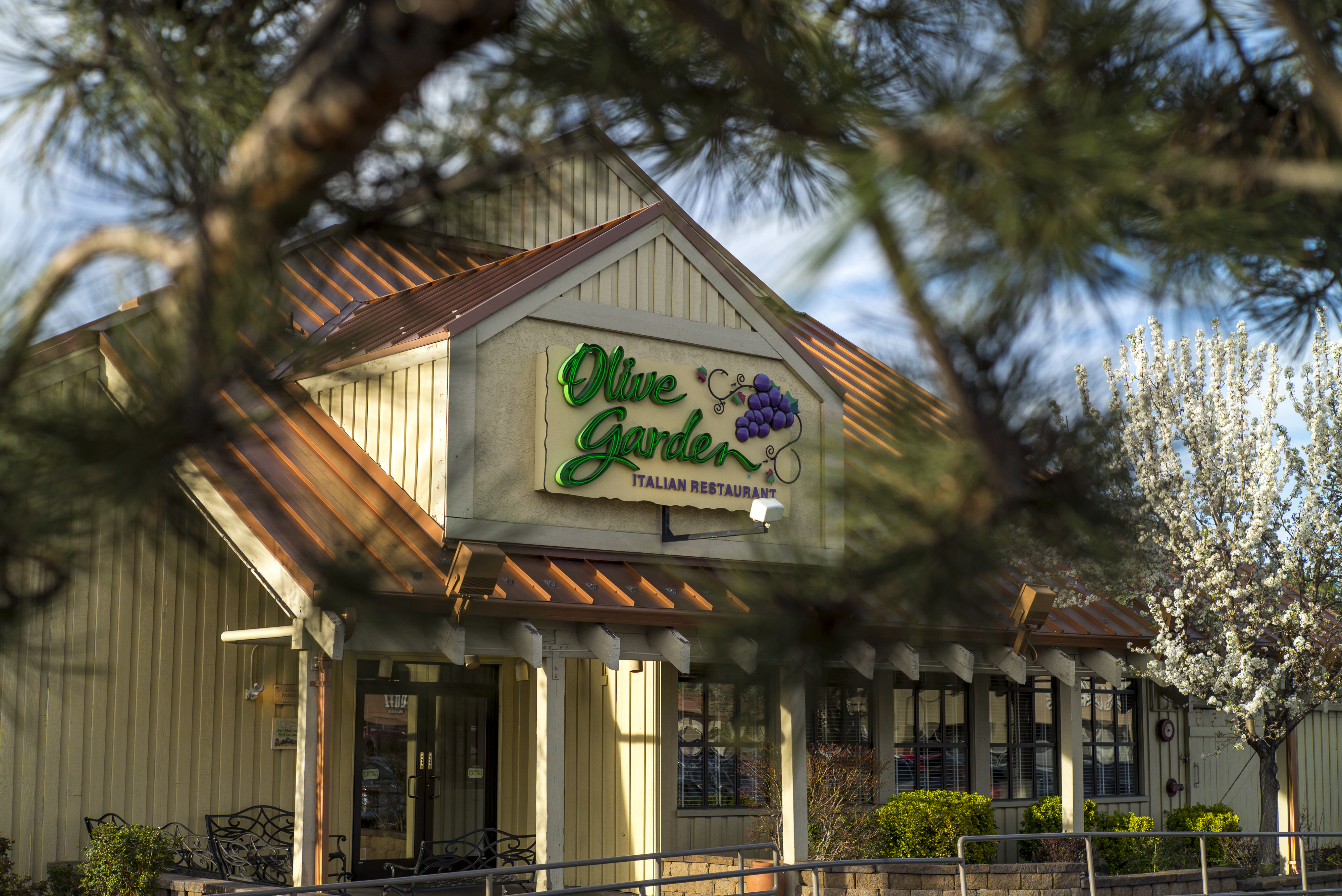 An Olive Garden in Reno, Nevada on March 19, 2015.