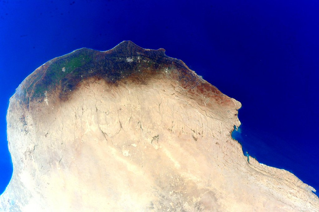 I've missed the color green. Found a nice patch of it in #Africa today! #YearInSpace  - via Twitter on Jan. 5, 2016