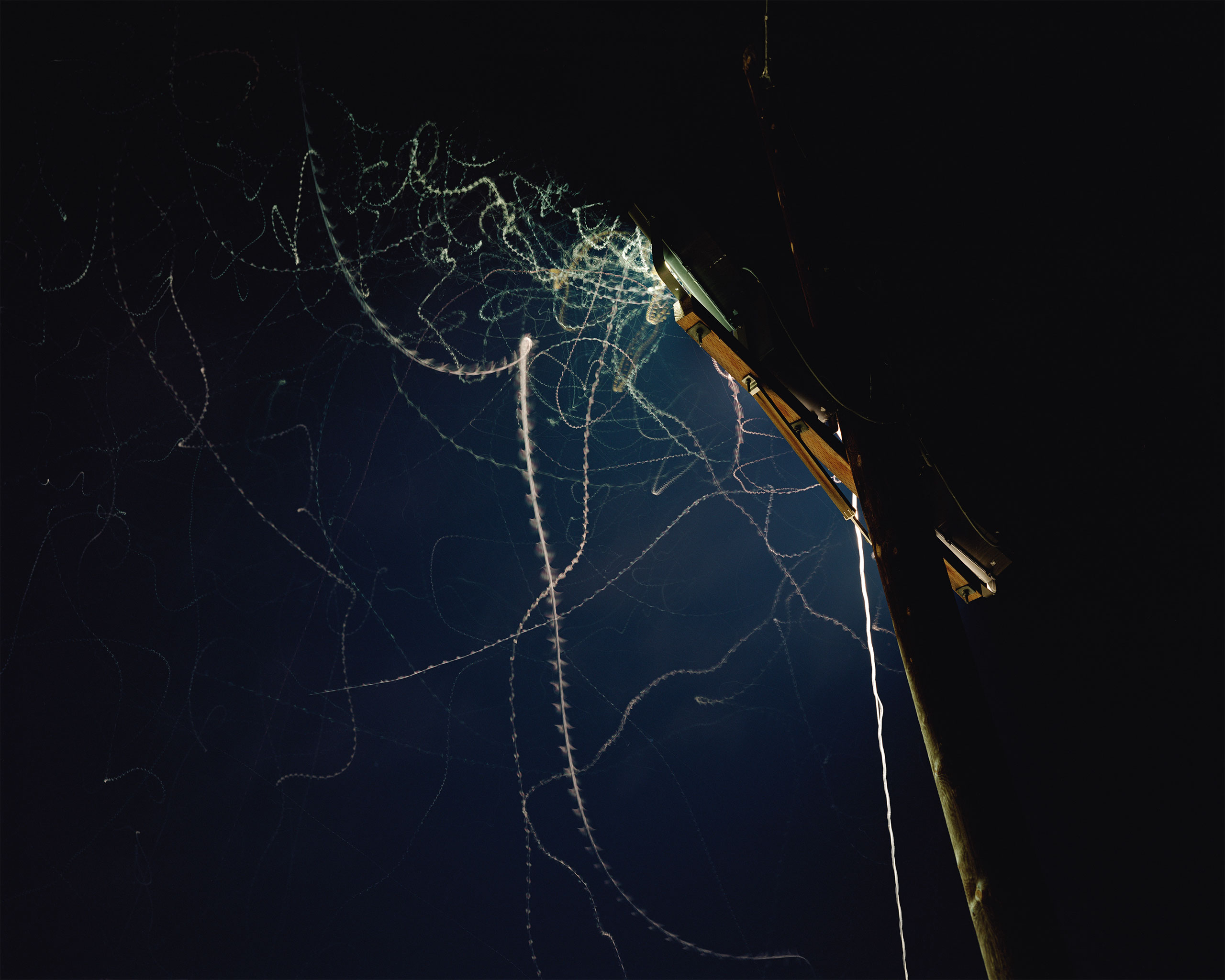 Arizona–Mexico border. A long camera exposure captures the flight of moths as they destroy themselves against the hot security lights. 2006.