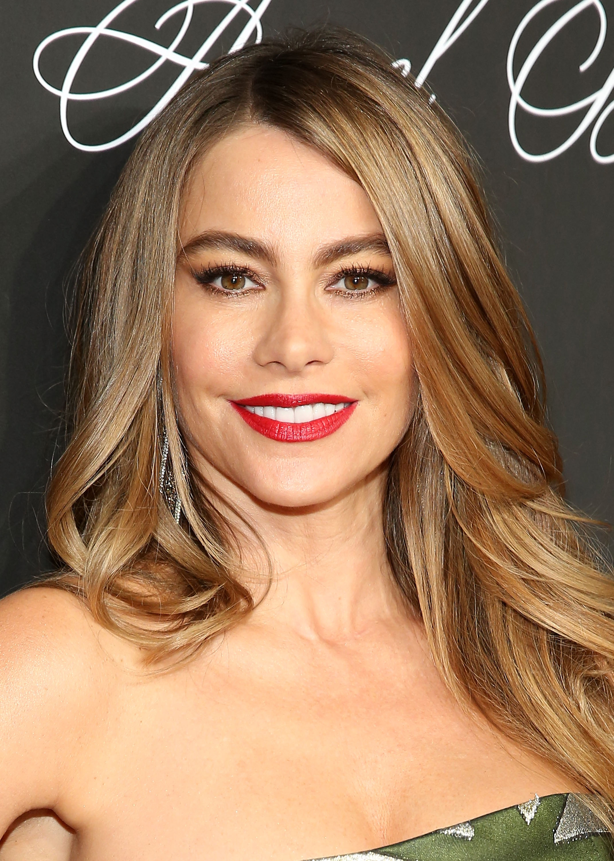 Actress Sofia Vergara attends Angel Ball 2014 at Cipriani Wall Street on Oct. 20, 2014 in New York City.