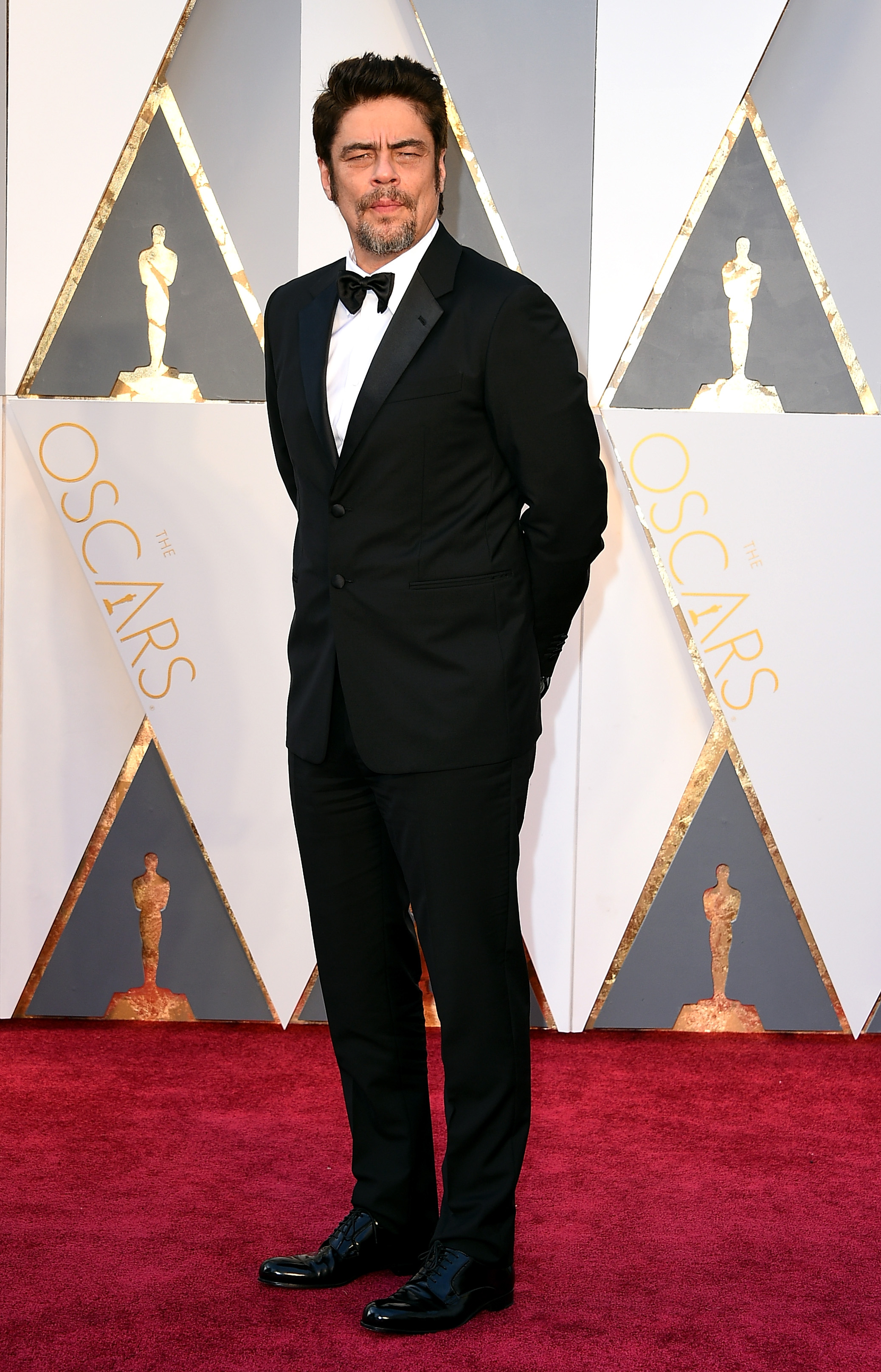 Benicio Del Toro attends the 88th Annual Academy Awards on Feb. 28, 2016 in Hollywood, Calif.