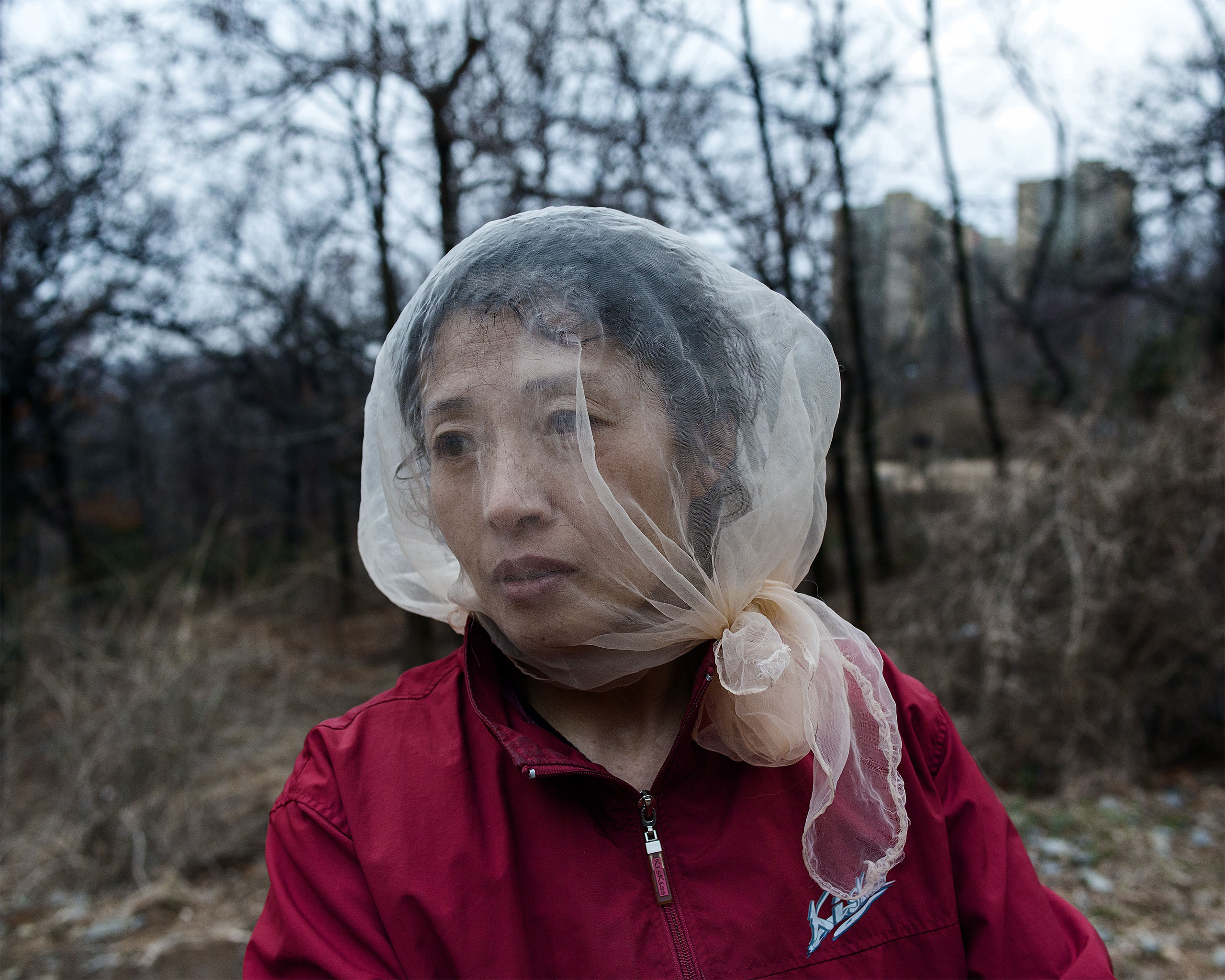 A woman in Dandong, China covers her face with a piece of cloth to protect from mosquitos.  In China's border cities, there is a normality to daily life which stands  in contrast to  the deprivation across the  border.