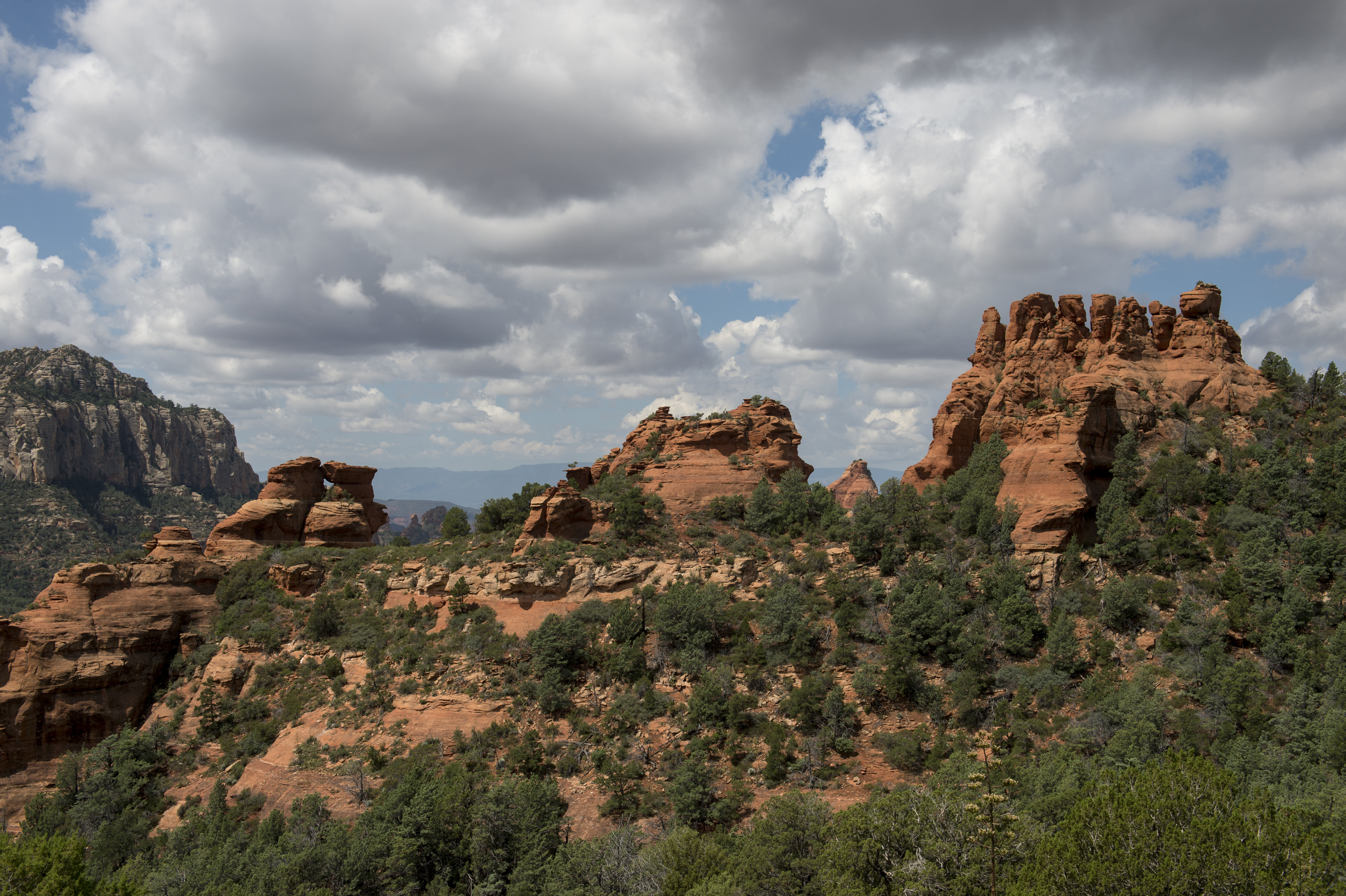 View of the red rock formations from Schnebly Hill Road near Sedona, Arizona, USA.