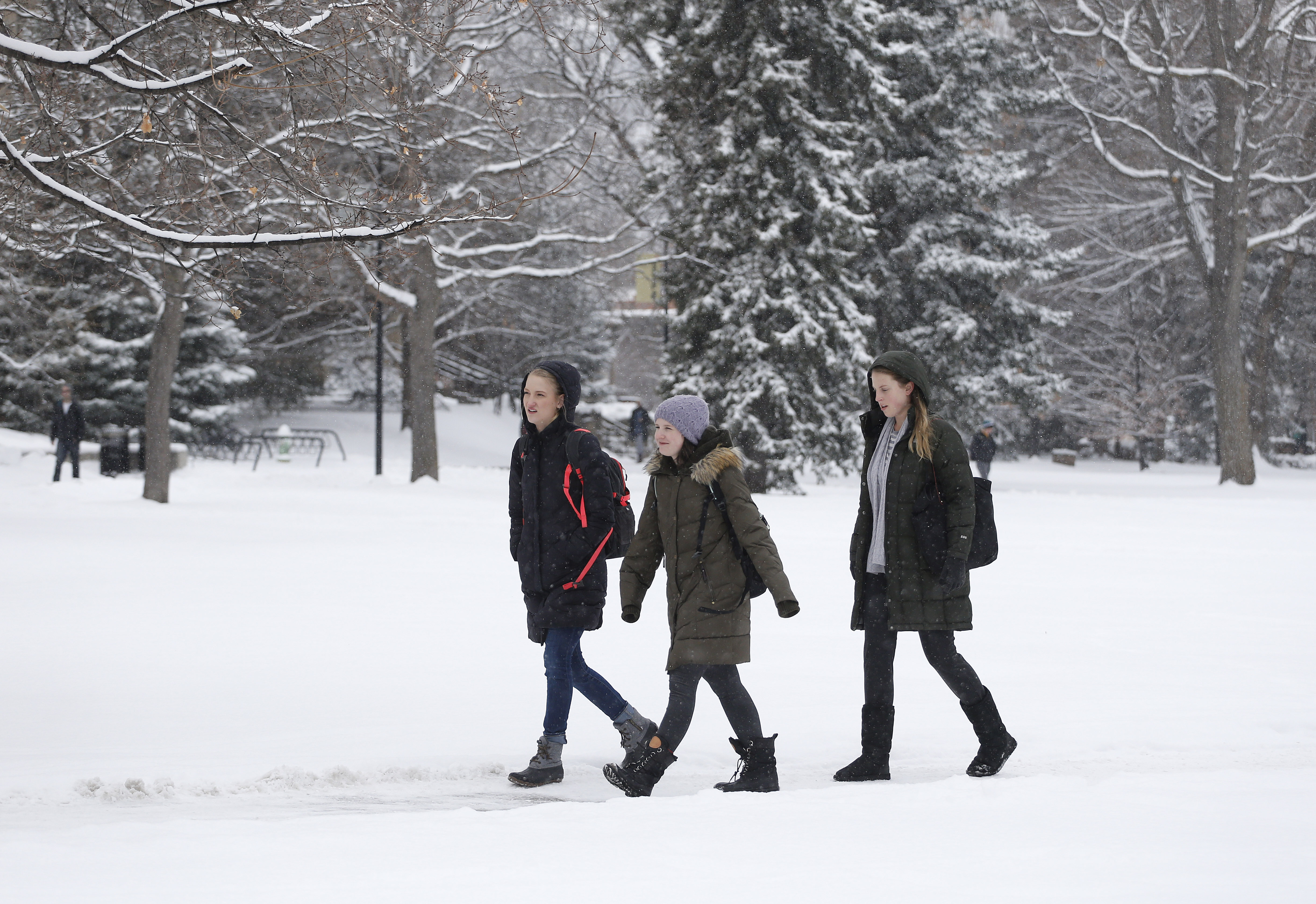 Students walk between classes during a fresh snow fall on the campus of the University of Colorado, in Boulder, Colo. on Feb. 1, 2016.