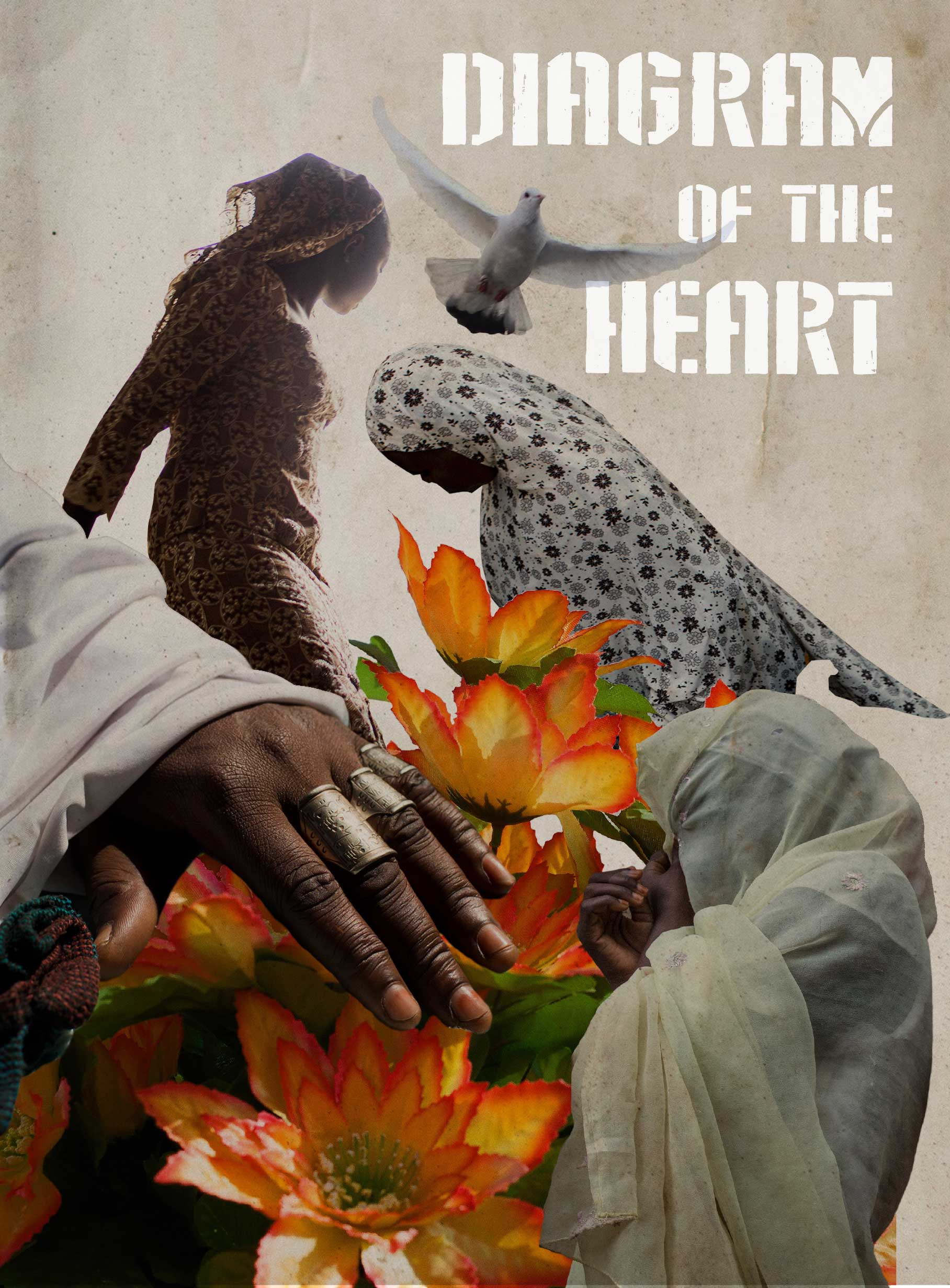 'Diagram of the Heart', by Glenna Gordon, will be released as a photo book on Feb. 11, 2016, published by Red Hook Editions.