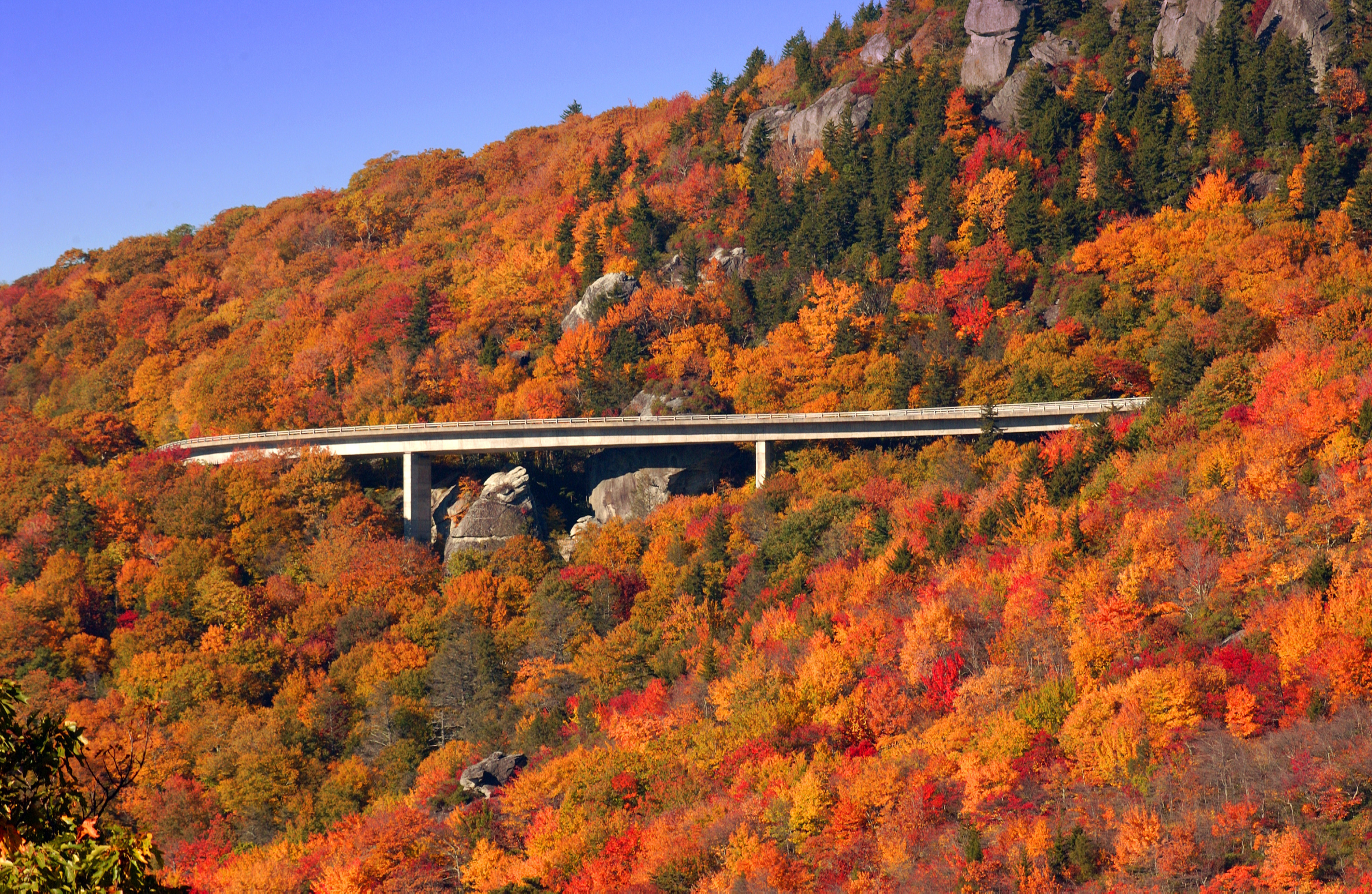The Linn Cove Viaduct crosses fall foliage on the Blue Ridge Parkway in North Carollina.