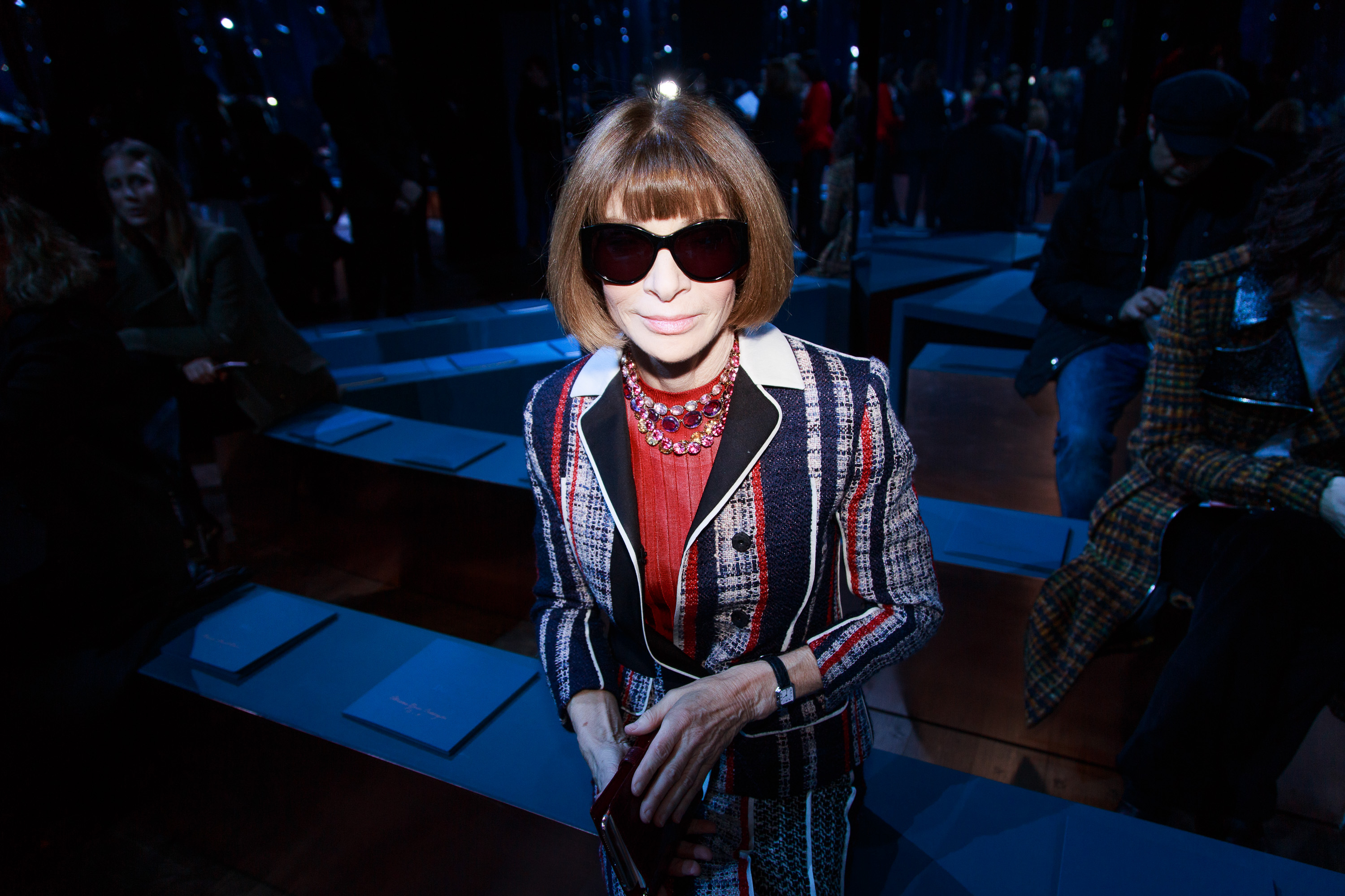 Anna Wintour attends the Christian Dior Haute Couture Spring Summer 2016 show as part of Paris Fashion Week  on January 25, 2016 in Paris, France.