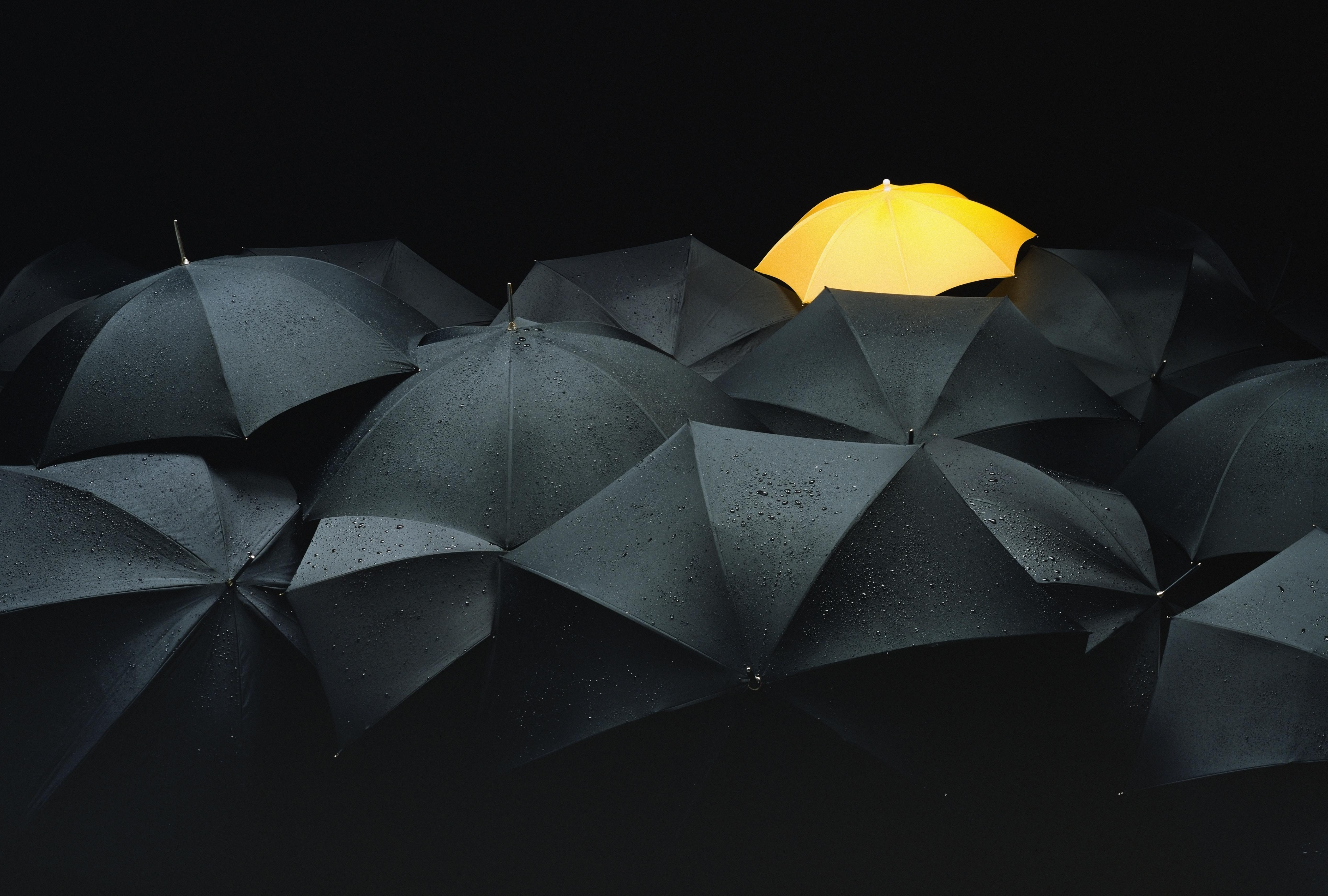 One yellow umbrella among many black umbrellas.