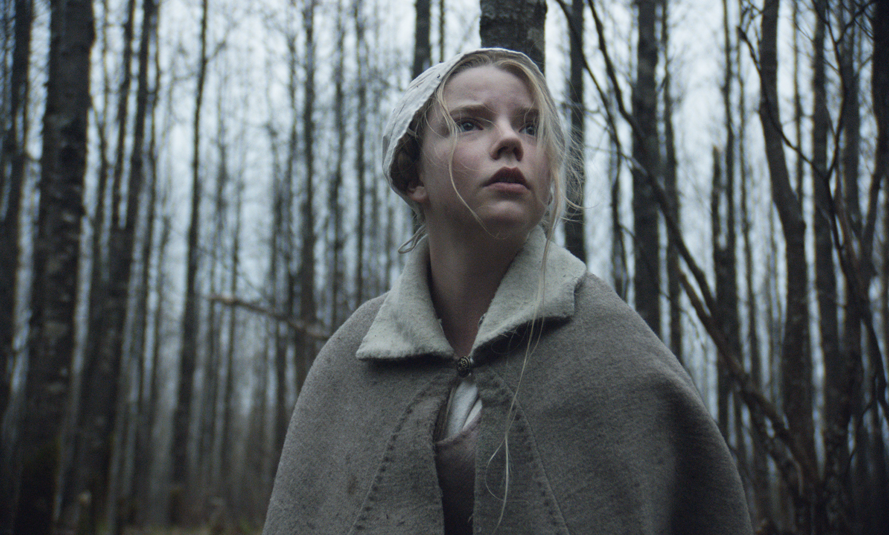 Anya Taylor-Joy in The Witch.