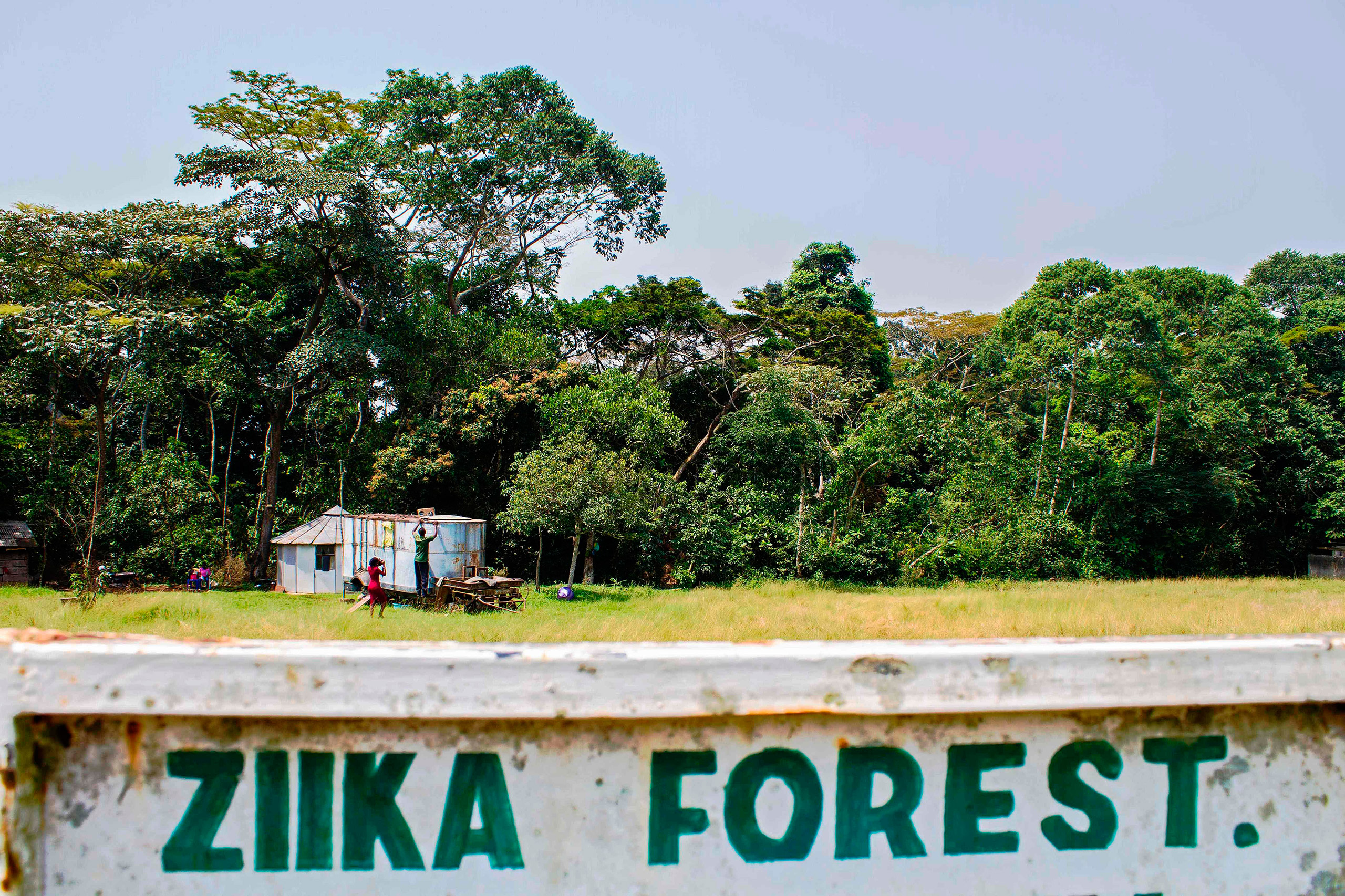 A sign post leading to the Ziika forest is seen near Entebbe, Uganda, Jan. 29, 2016. The Zika virus was first discovered here by scientists in April 1947 after testing a macaque monkey.