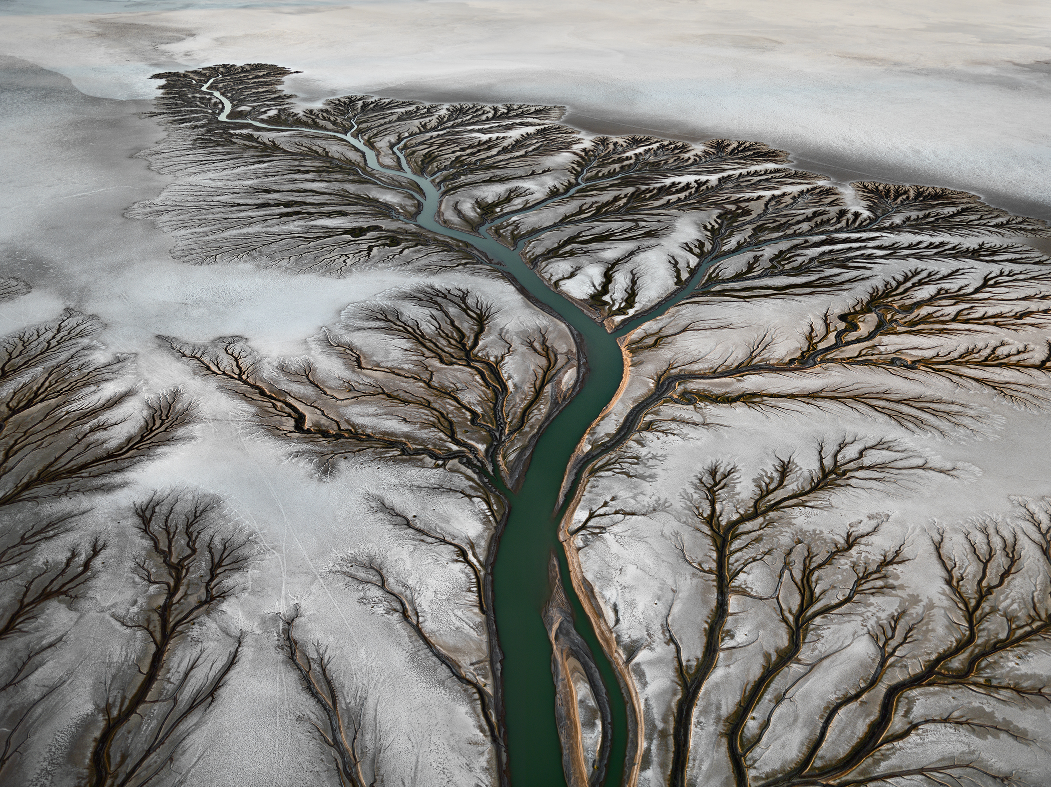 Colorado River Delta #2. 2011. From the series Water.