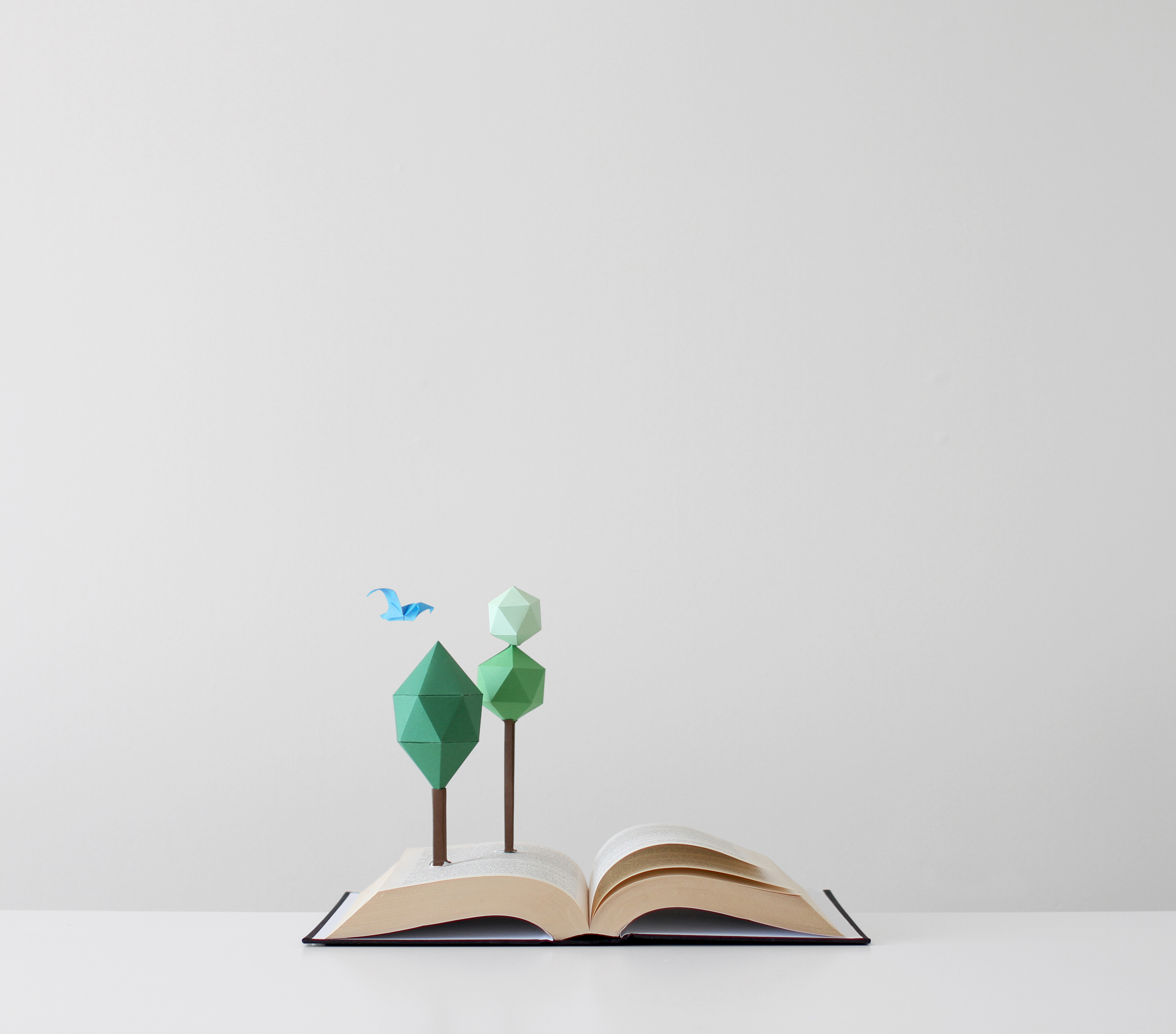 Paper made trees and bird growing out of an open book