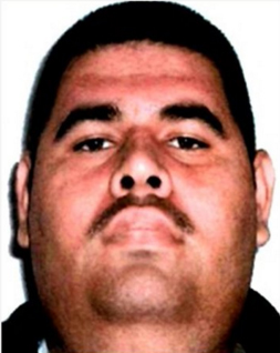 """This photo released by Mexico's Federal Police shows a man identified as Juan Manuel Alvarez, one of the alleged top money-launderers for drug lord Joaquin """"El Chapo"""" Guzman, in an unknown location"""