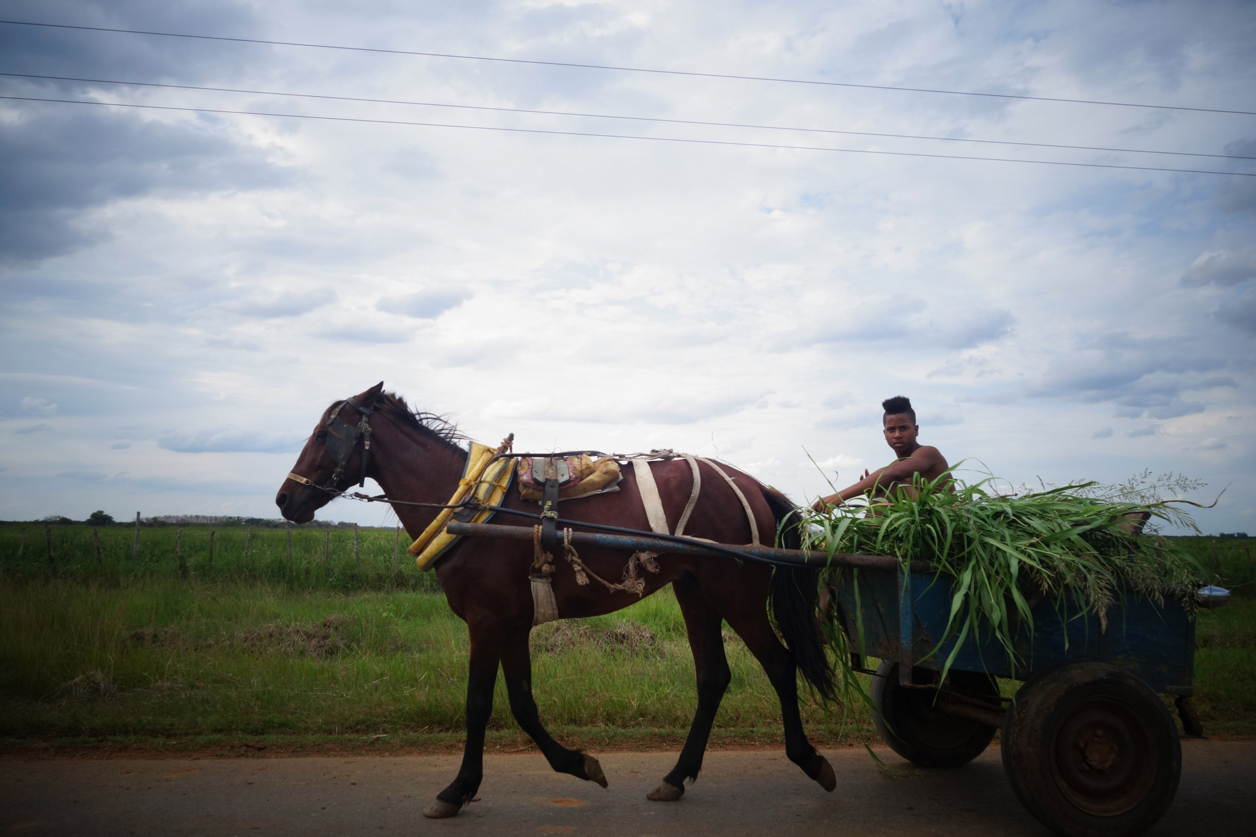 A boy drives a horse-drawn cart full of sugar cane on a road southeast of Havana, Cuba, May 2, 2015.