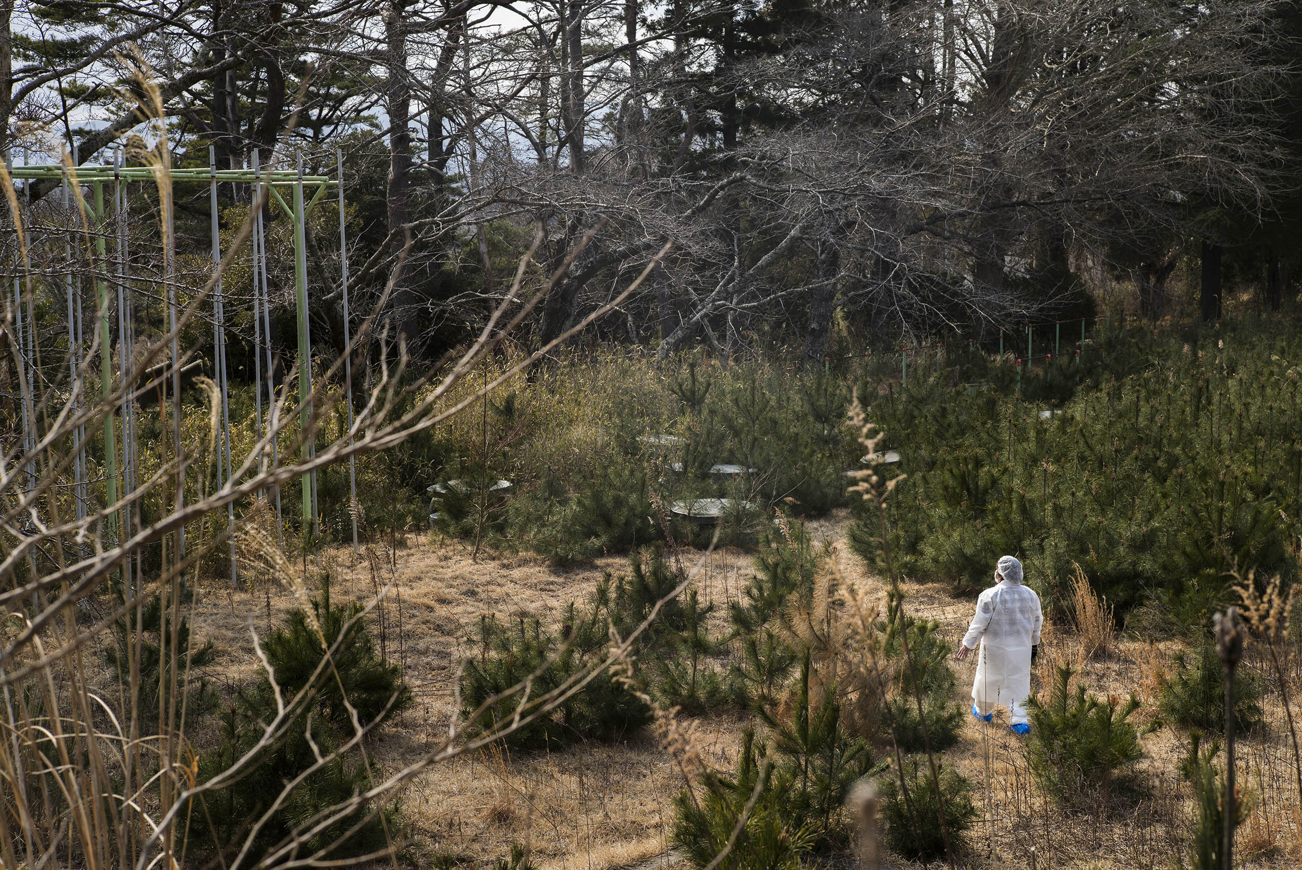Terumi Murakami, a 43-year-old mother of three children and an evacuee from Okuma, about 5km from Fukushima Daiichi nuclear power plant, walks through her children's highly contaminated and abandoned Kumano Elementary School grounds in Okuma, Japan, March 4, 2016. The school lies within the 5km exclusion zone around the crippled nuclear power plant.