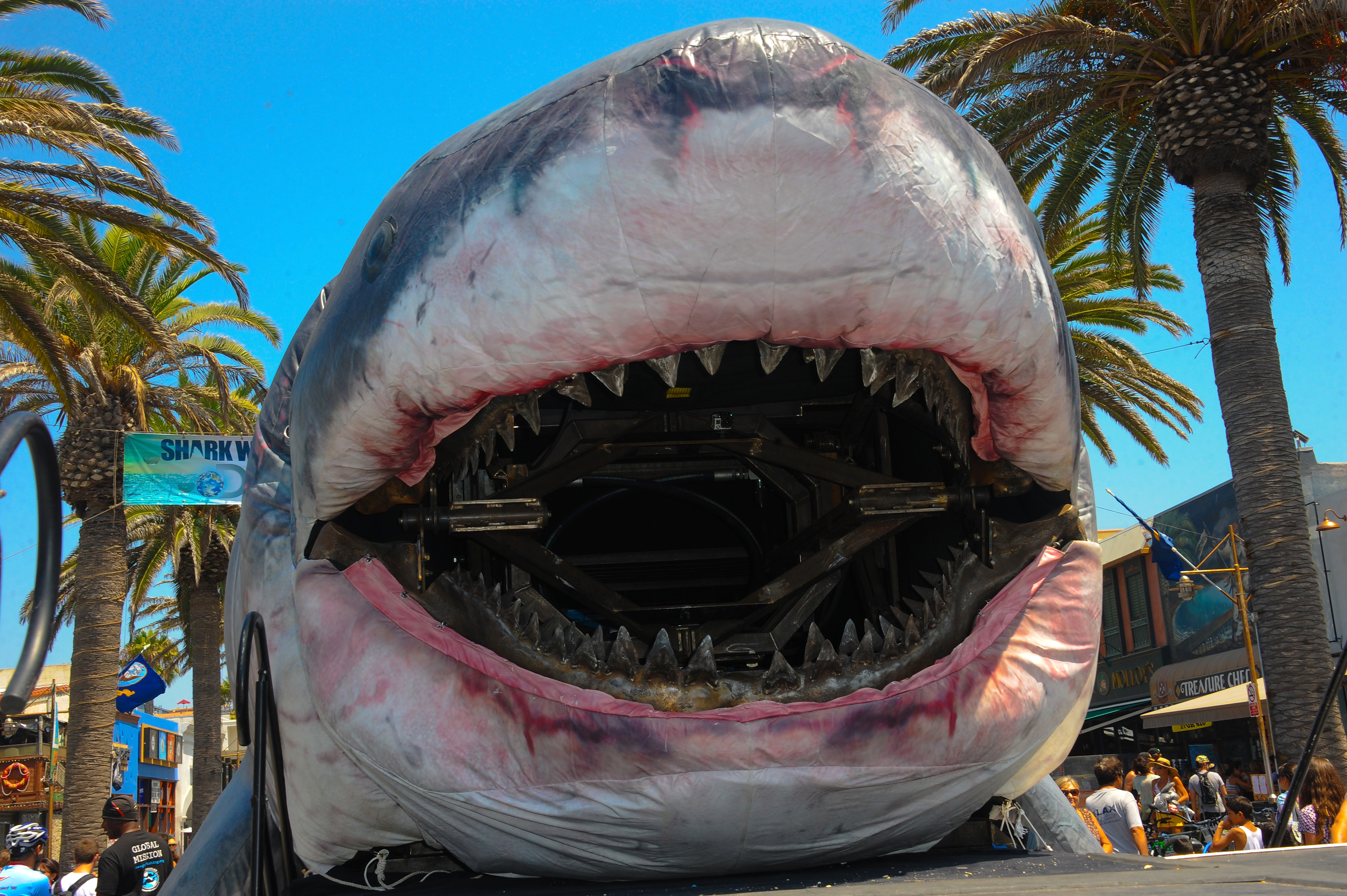 HERMOSA BEACH, CA - AUGUST 10:  Sharkzilla on display at Discovery Channel's Day 2 of  Shark Week Kickoff  with FinFest 2014 held at the Hermosa Beach Pier on August 10, 2014 in Hermosa Beach, California.  (Photo by Albert L. Ortega/Getty Images)