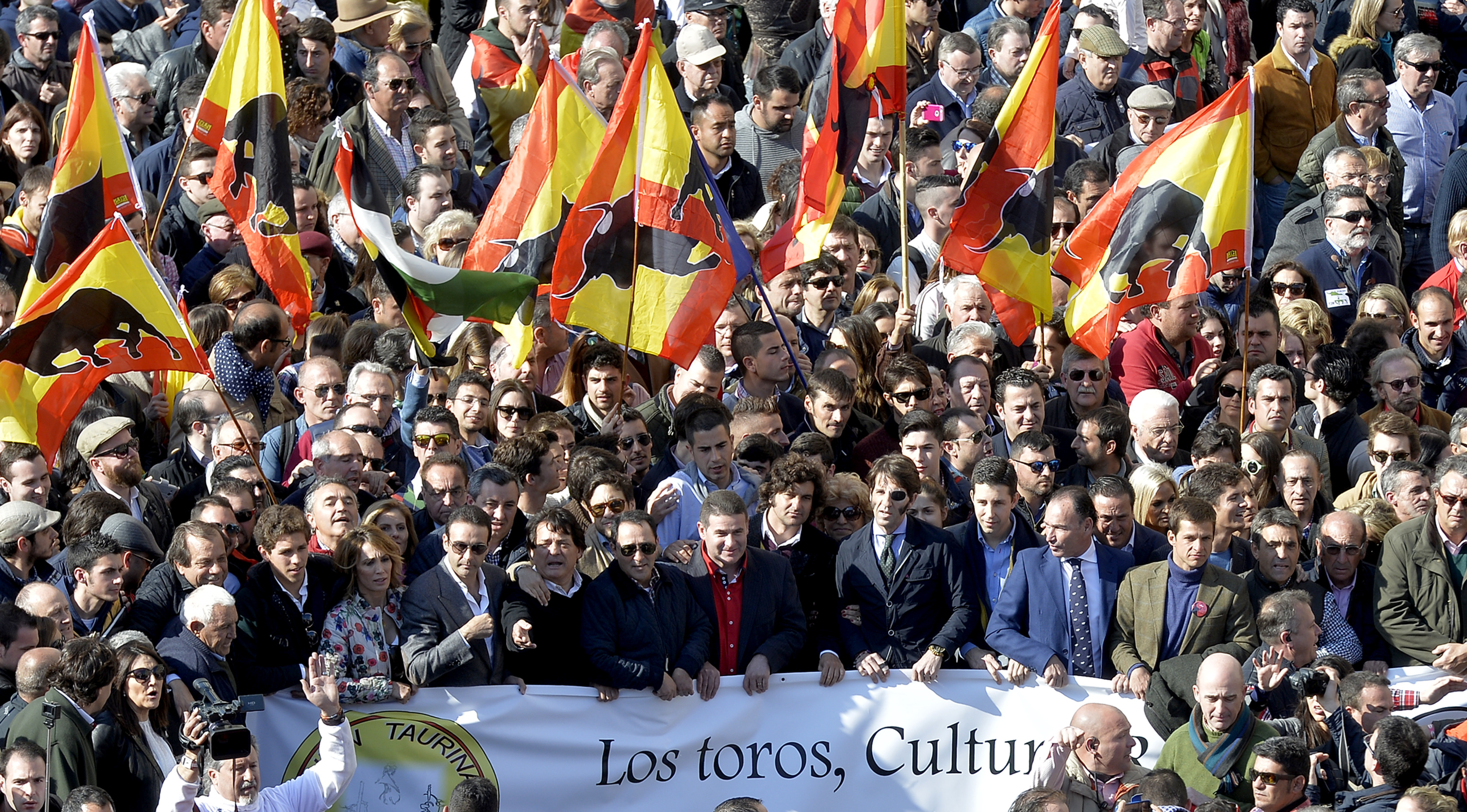 Pro-bullfighting supporters wave flags adorned with bull image as they demonstrate during the Fallas Festival in Valencia on March 13, 2016