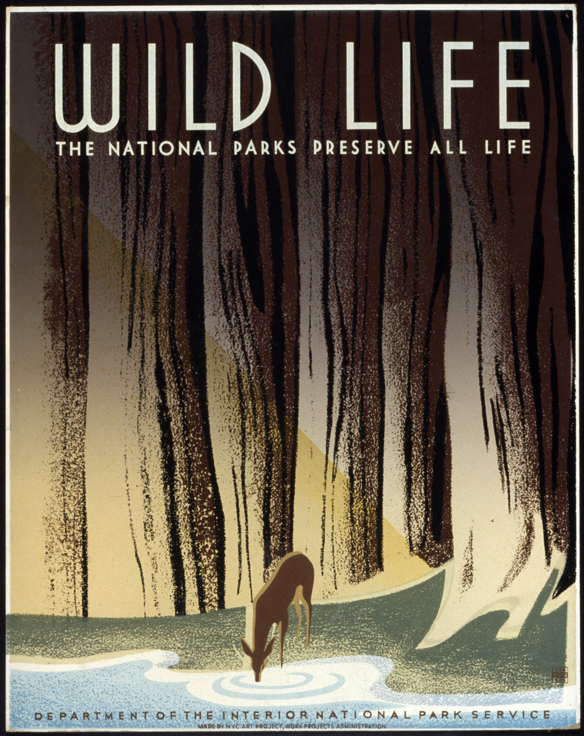 Wild life The national parks preserve all life poster, ca. 1936-1940.