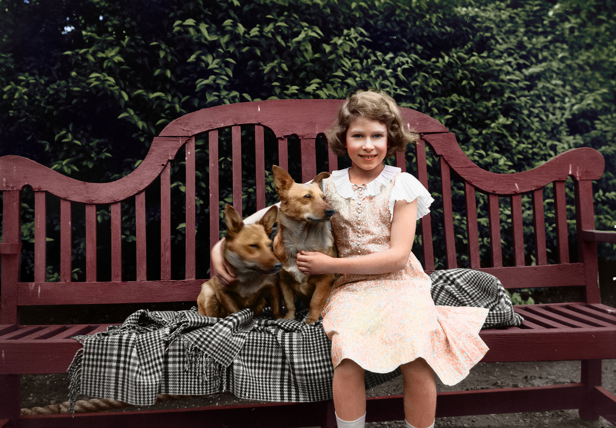 Princess Elizabeth sitting on a garden seat with two corgi dogs at her home on 145 Piccadilly, London.  July 1936.