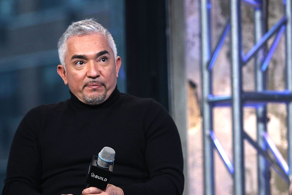 Cesar Millan is pictured here on Feb. 4, 2016 in New York City.