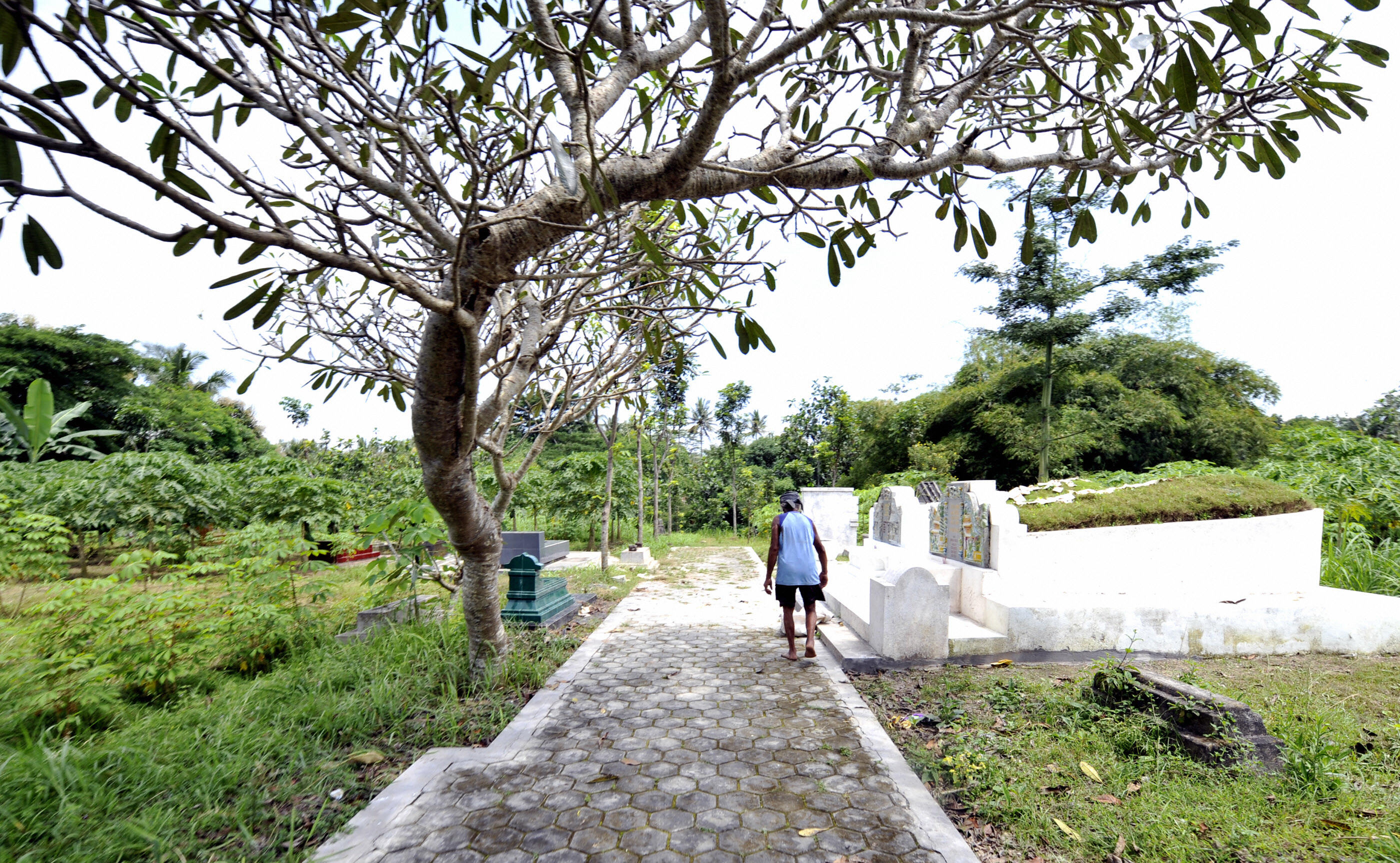 A man walks toward a grave yard where hundreds of victims were buried during the 1965 massacre of people allegedly involved in the Indonesian Communist Party (PKI) in Boyolali, Indonesia, on April 13, 2008