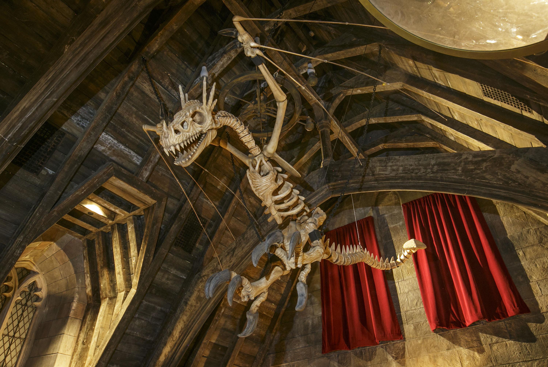 Dragon skeleton in Hogwarts Castle.